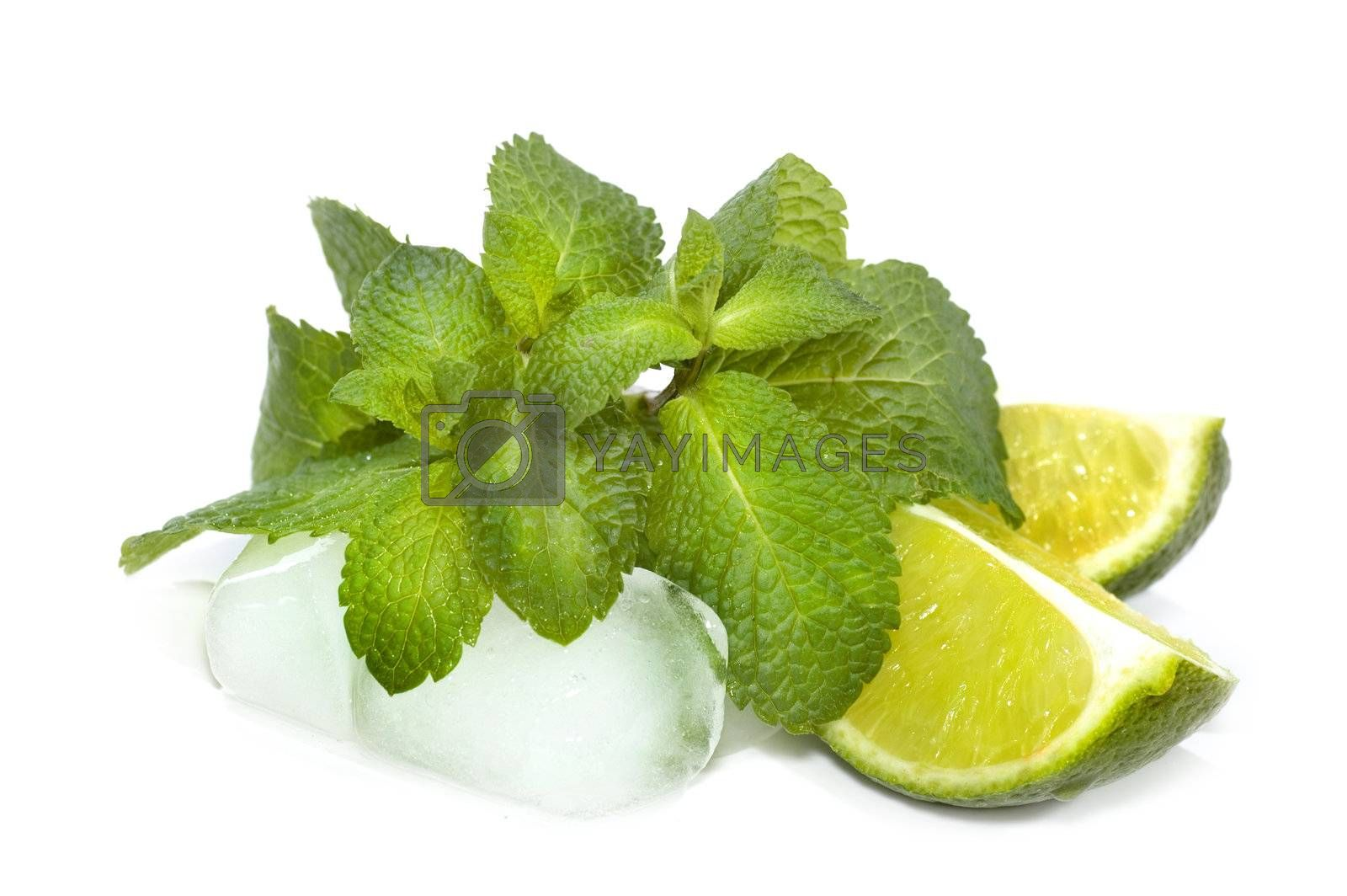 Mojito Ingredients: Mint, Lime & Ice Closeup by Subbotina Anna