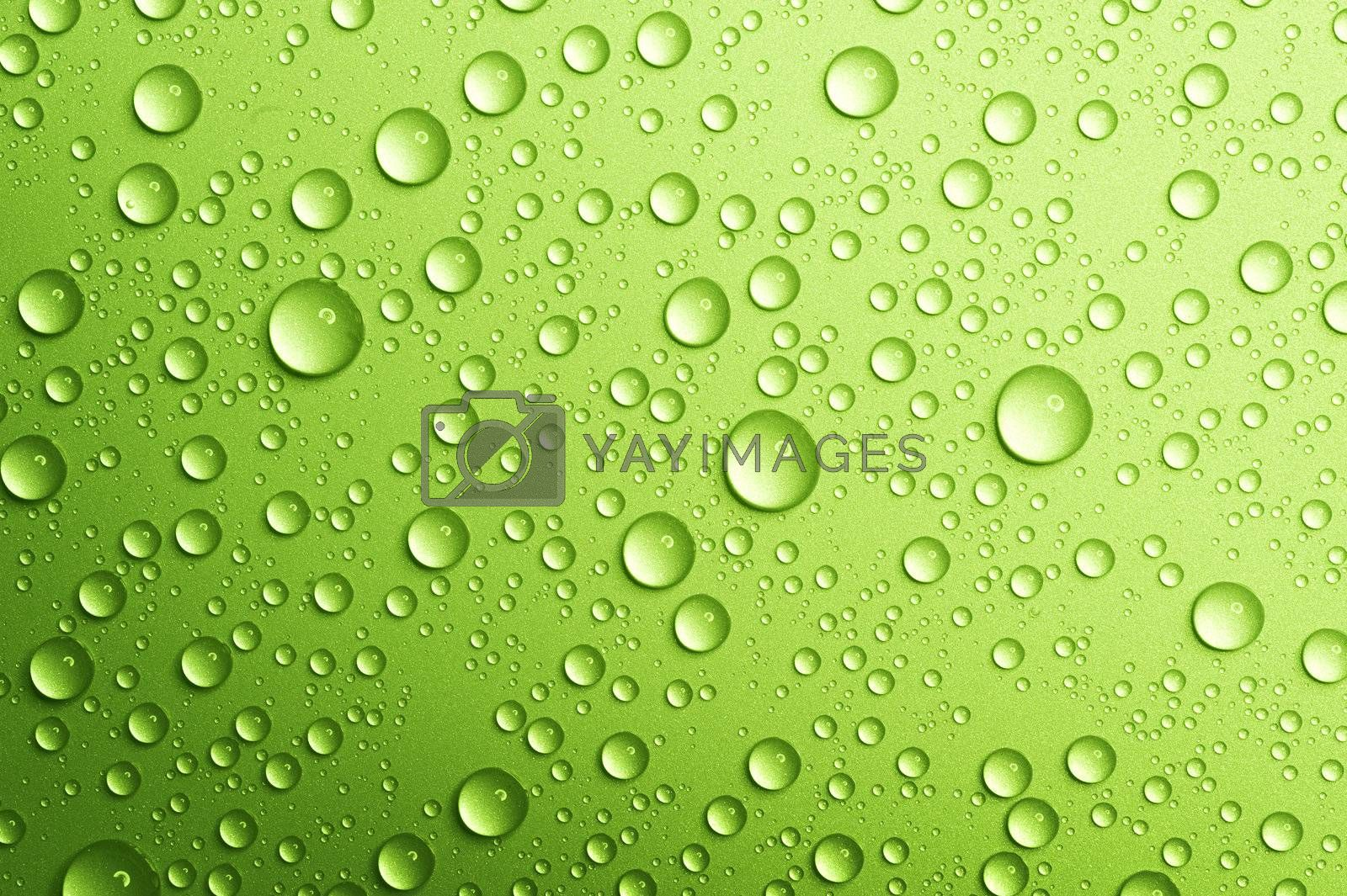 Water drops over green. Closeup by Subbotina Anna