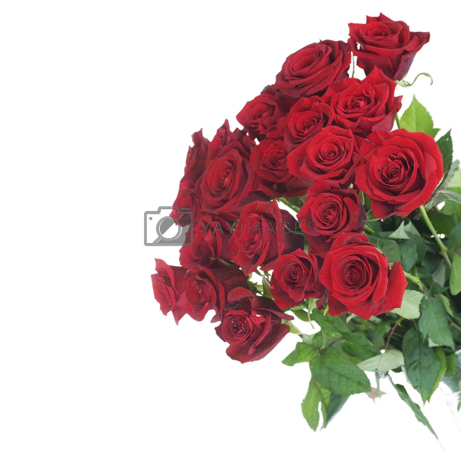 Big Red Roses Bouquet by Subbotina Anna