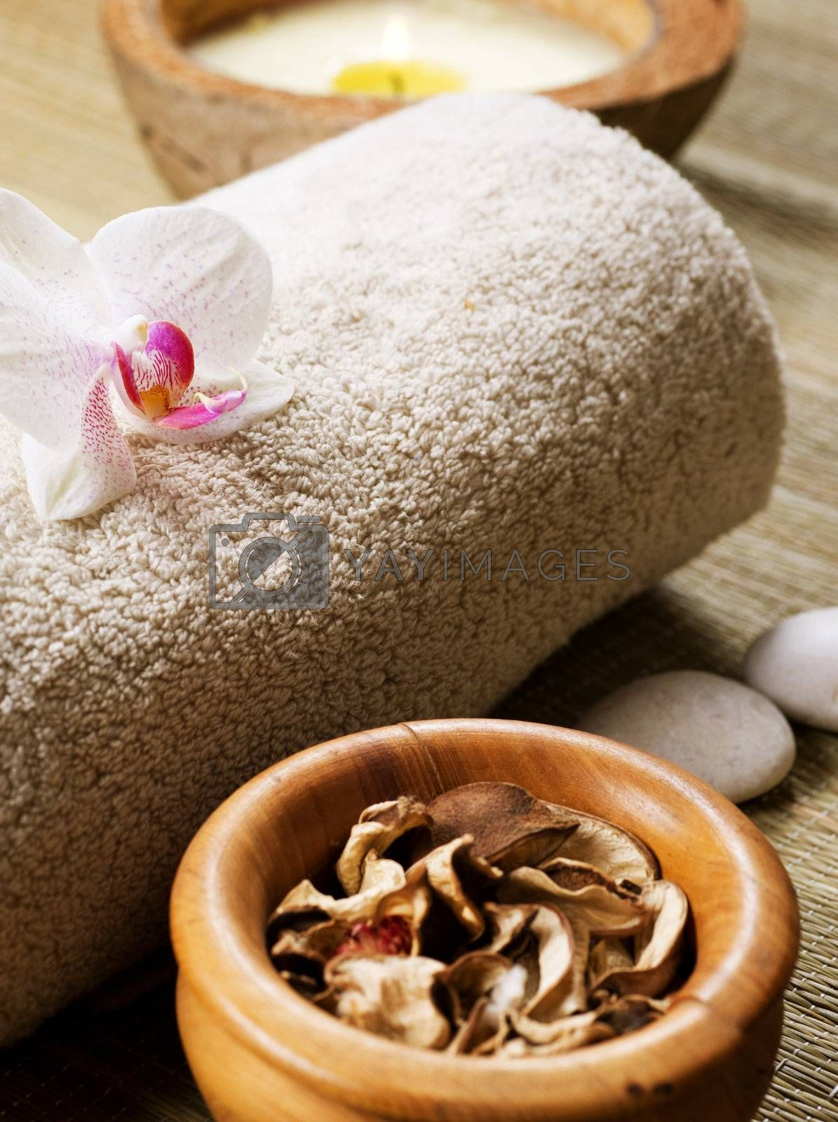 Spa treatment by Subbotina Anna