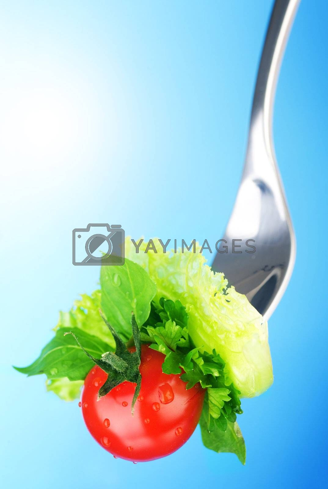 Healthy Eating Concept  by Subbotina Anna