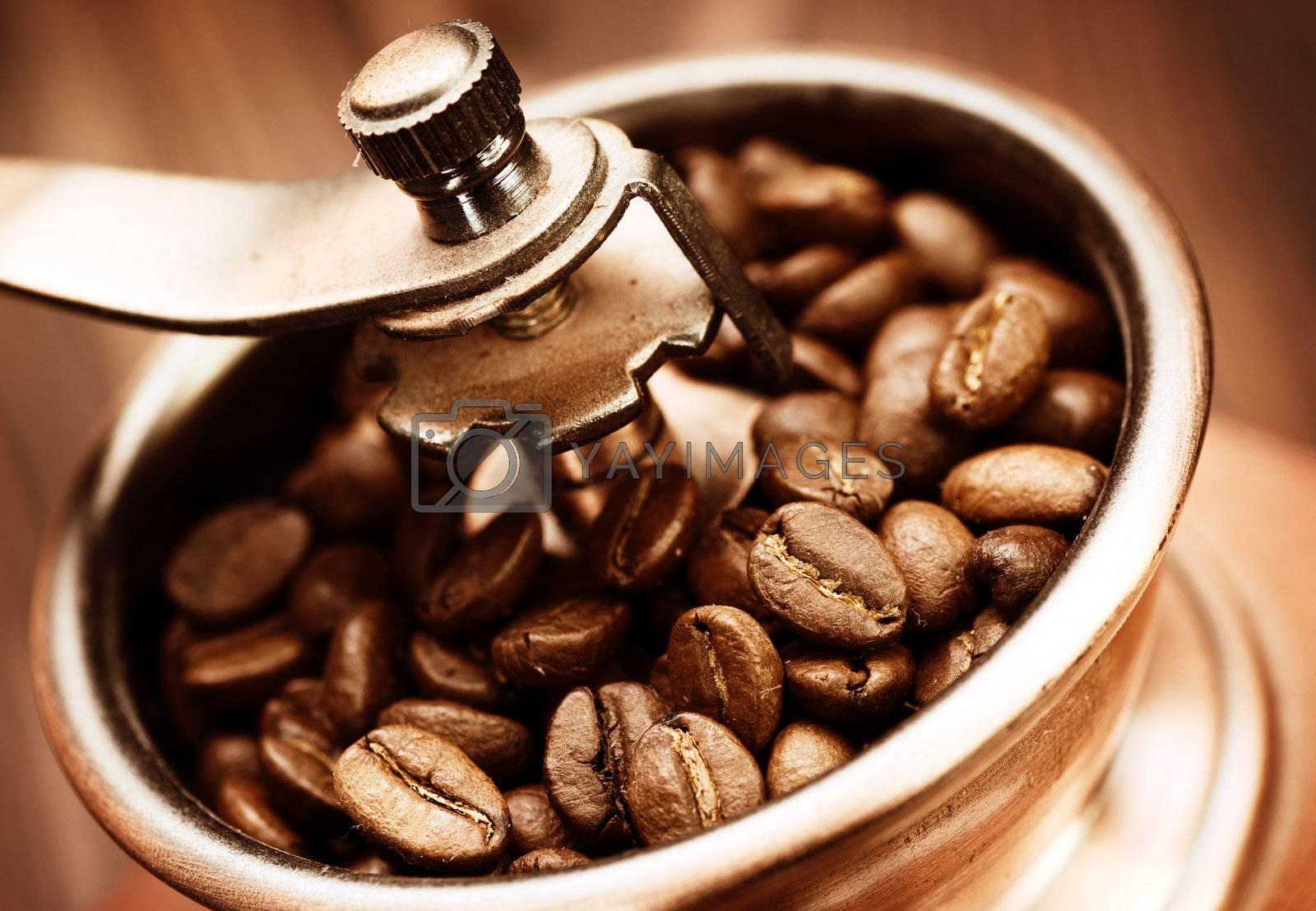 Coffee Mill by Subbotina Anna