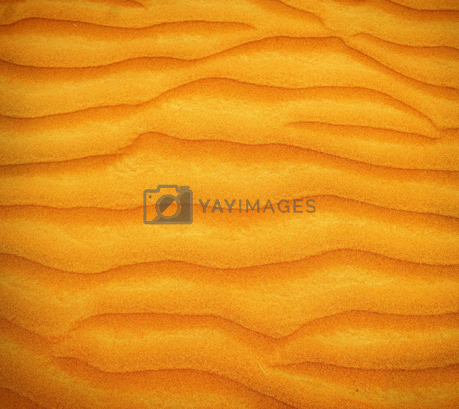 Sand Desert background by Subbotina Anna
