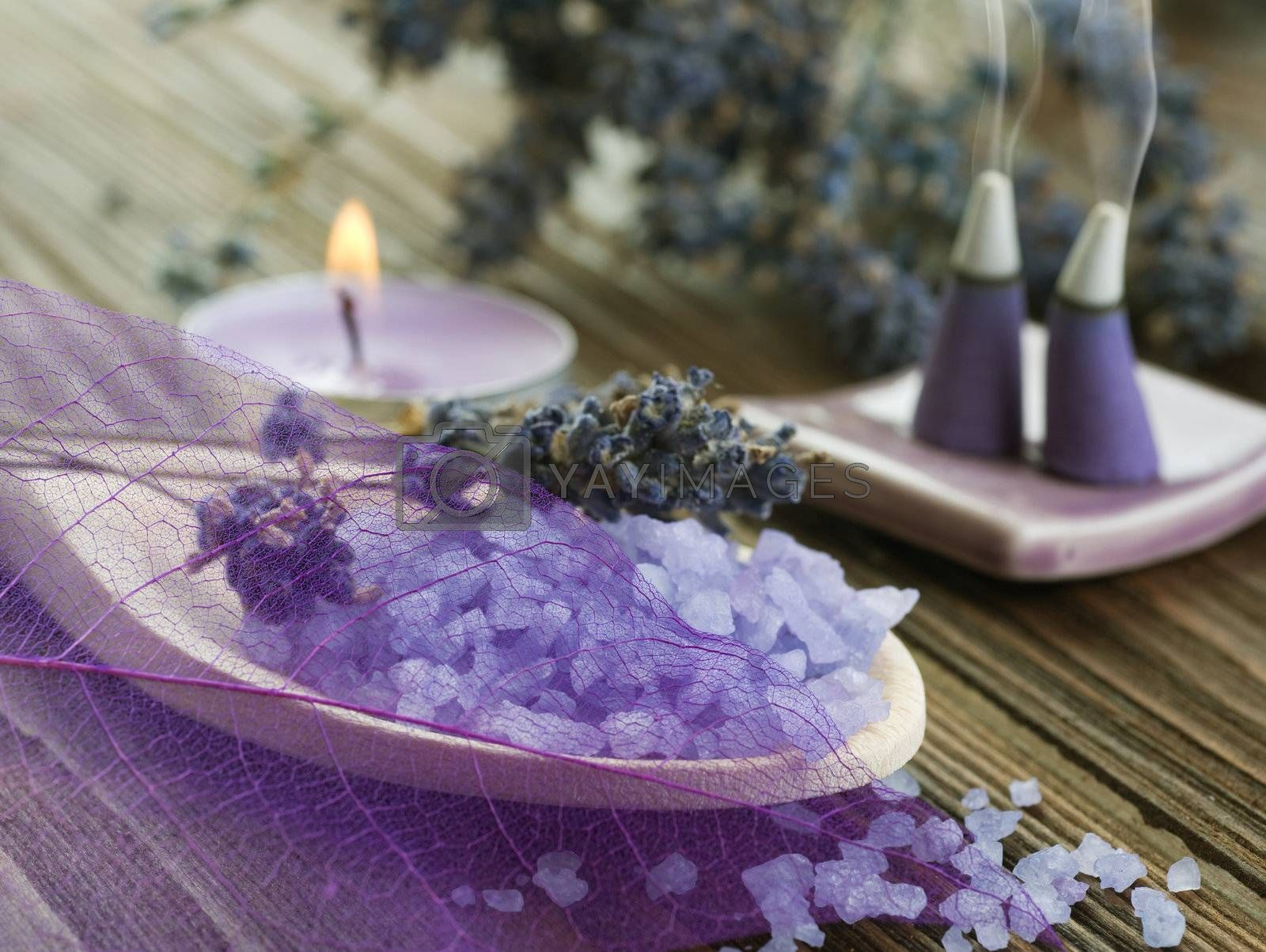 Lavender Spa Treatment  by Subbotina Anna