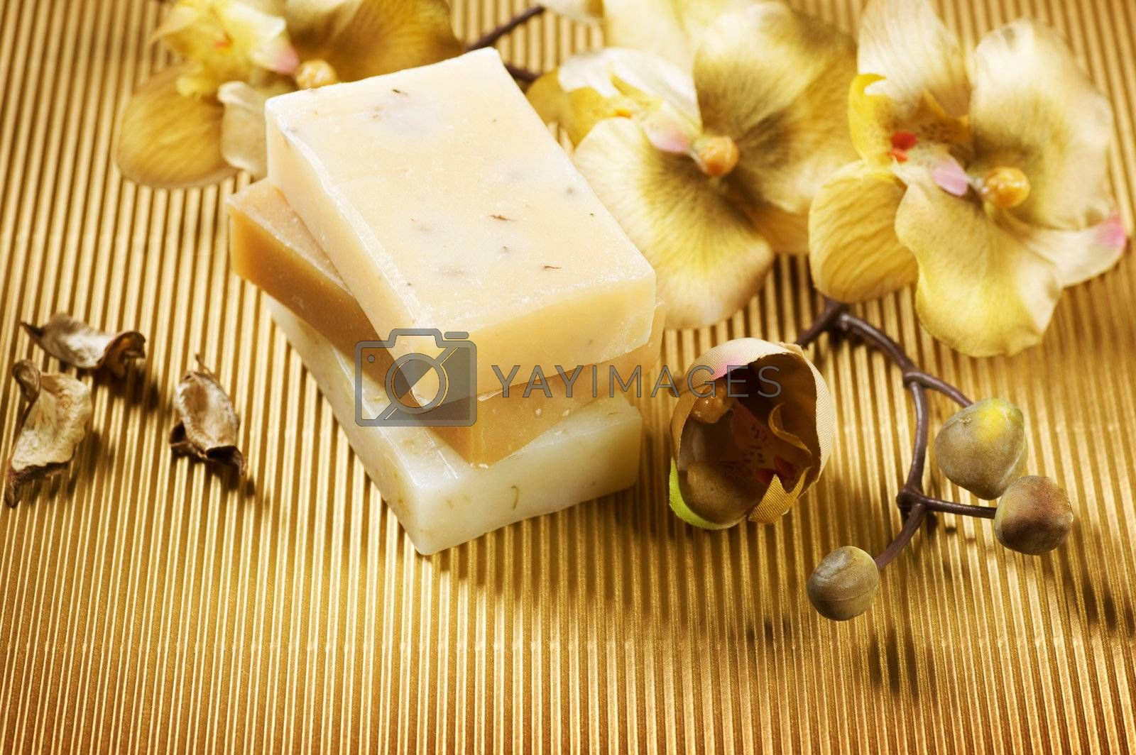 Handmade Soap. Spa