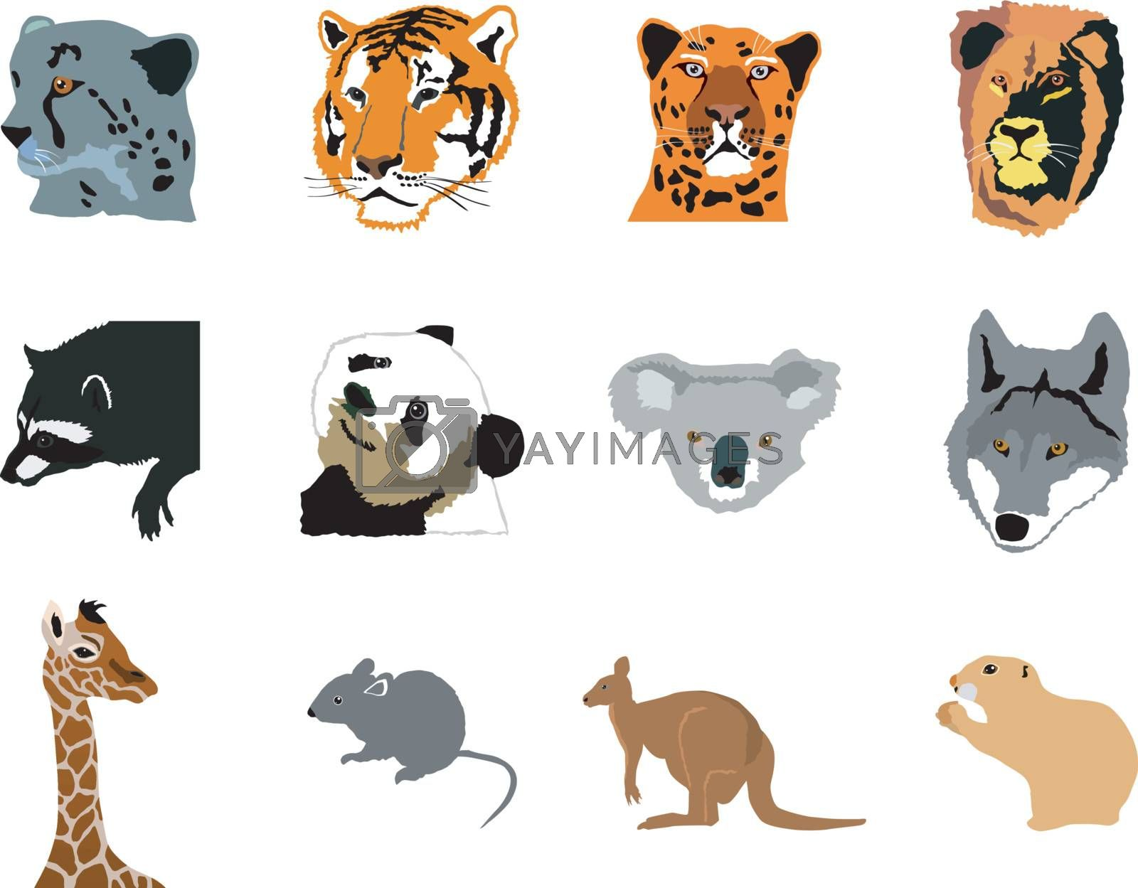 set of the different forest animals