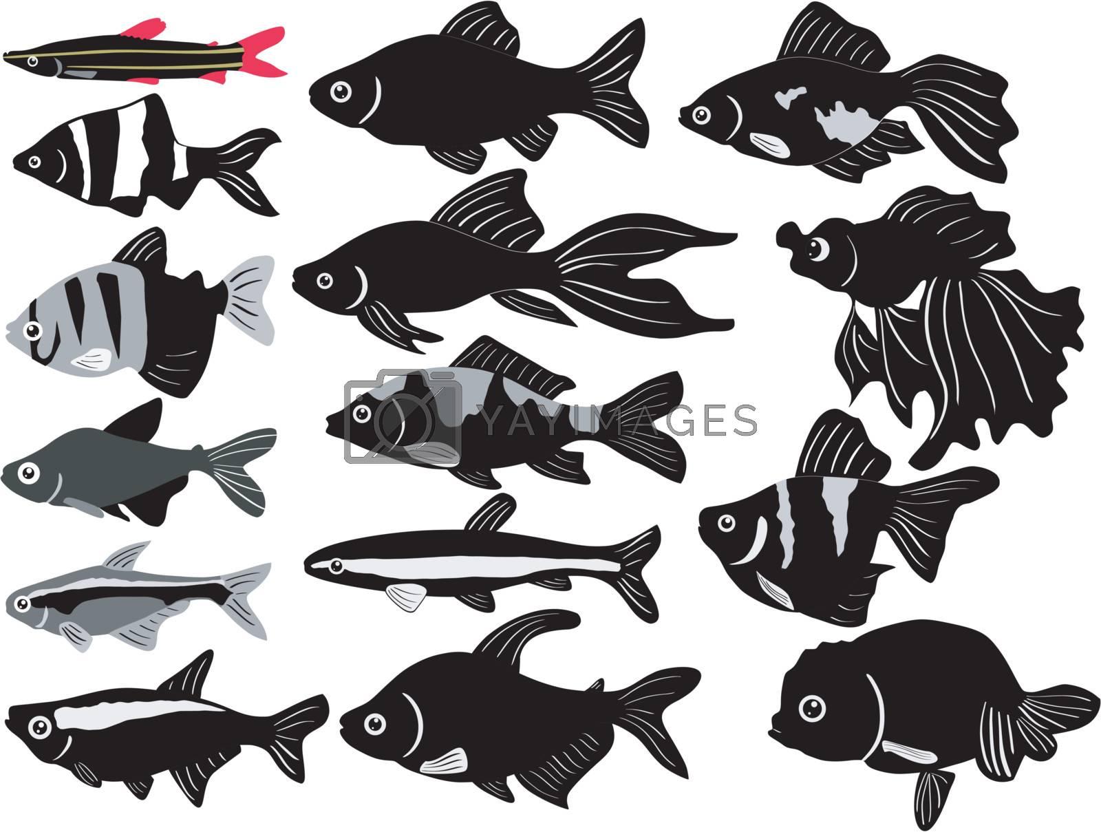 big set of the aquarian fish