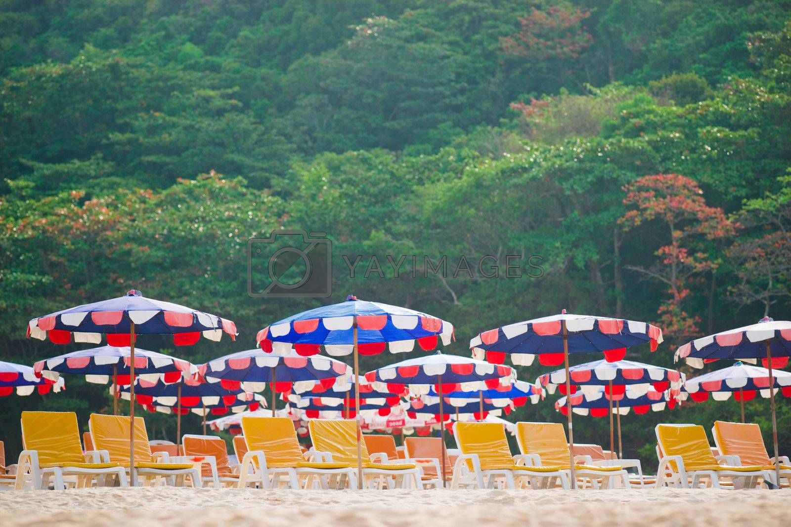 Sun loungers and umbrellas on the sand beach