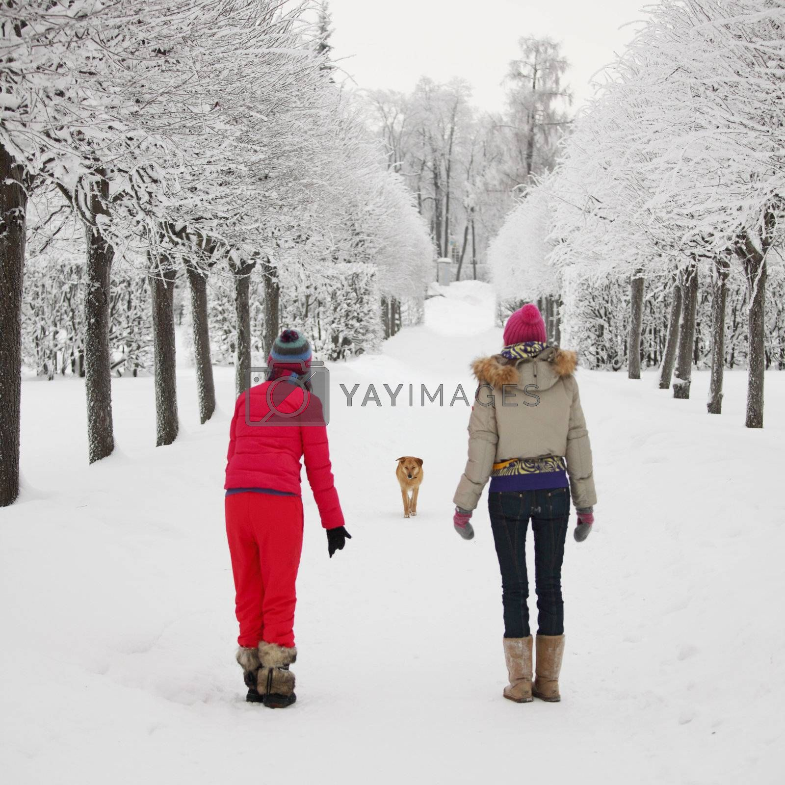 two women walk by winter alley snow trees on background