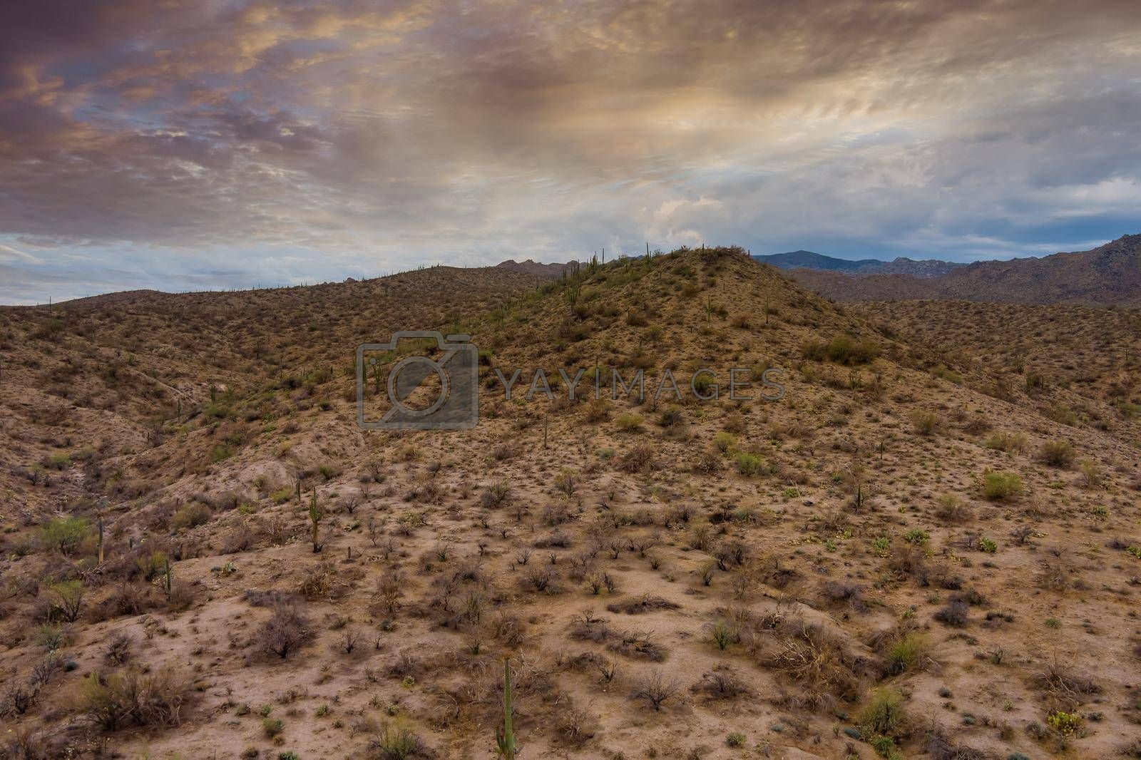 Royalty free image of Beautiful panorama all natural desert mountains of New Mexico by ungvar