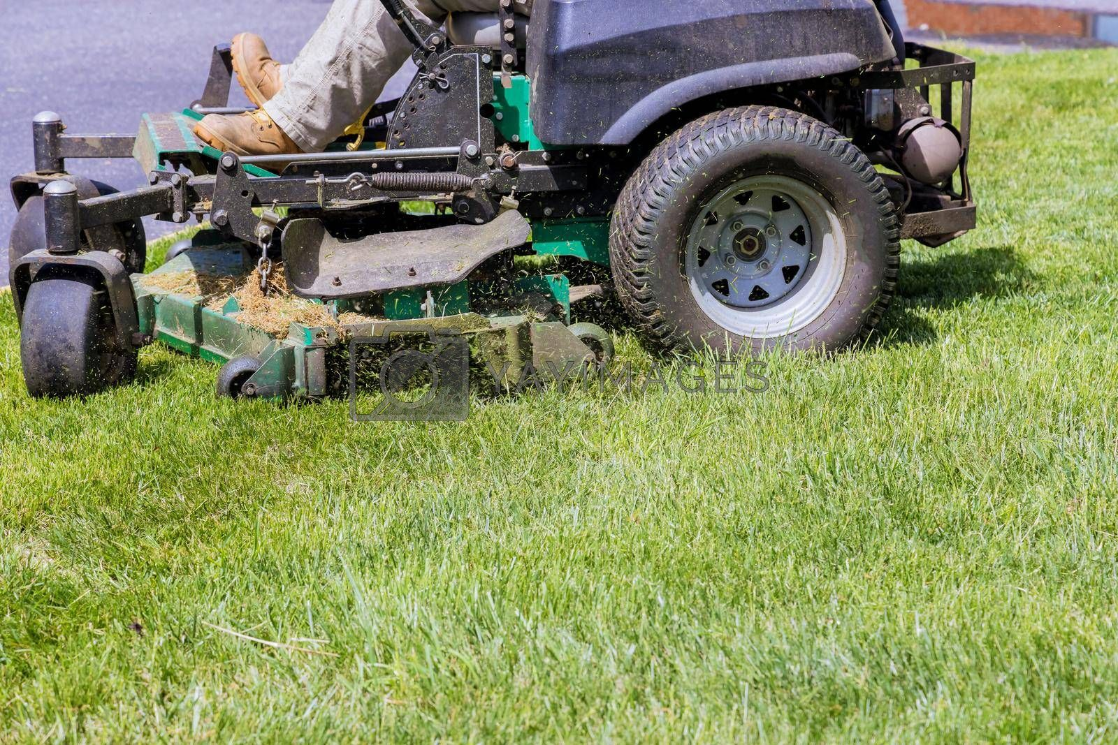 Royalty free image of Machine for cutting lawns on lawn mower on green grass in garden. by ungvar