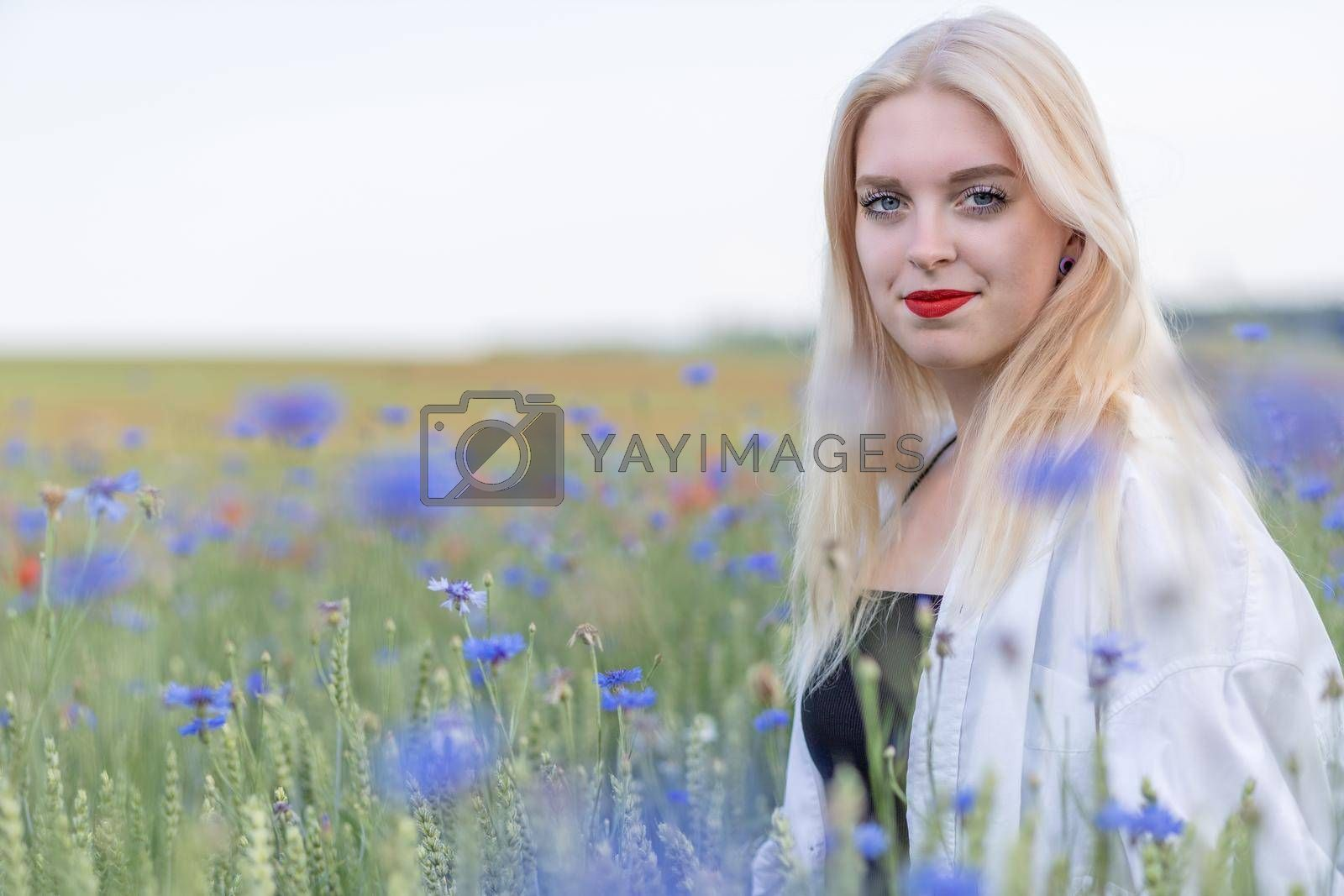 Royalty free image of Portrait of attractive blonde woman posing in summer meadow by Frank11