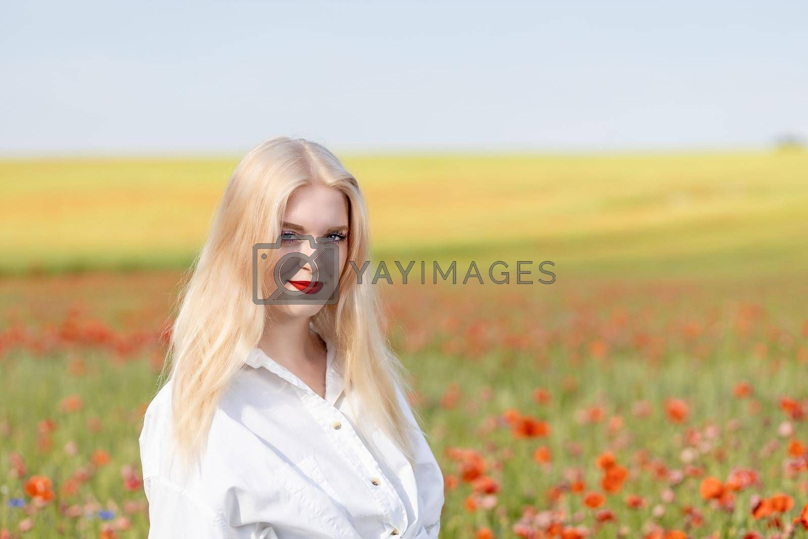 Royalty free image of Smiling blonde girl is  posing in red poppy field.  by Frank11