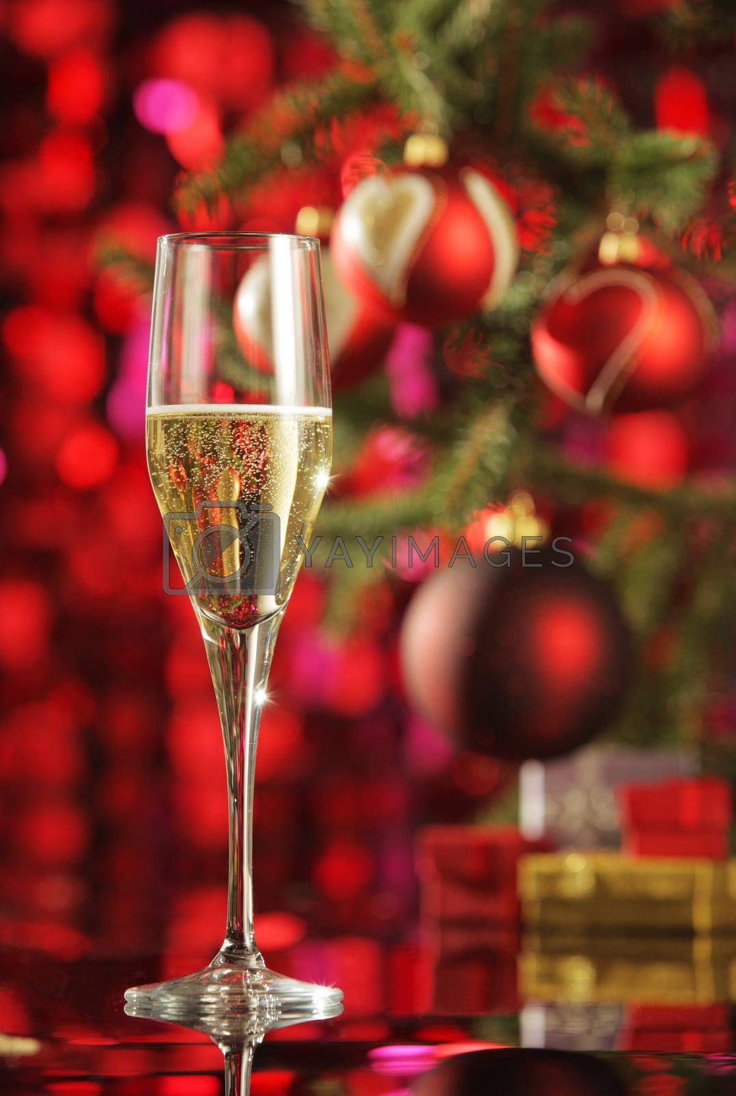 Glass of champagne with Christmas decorations