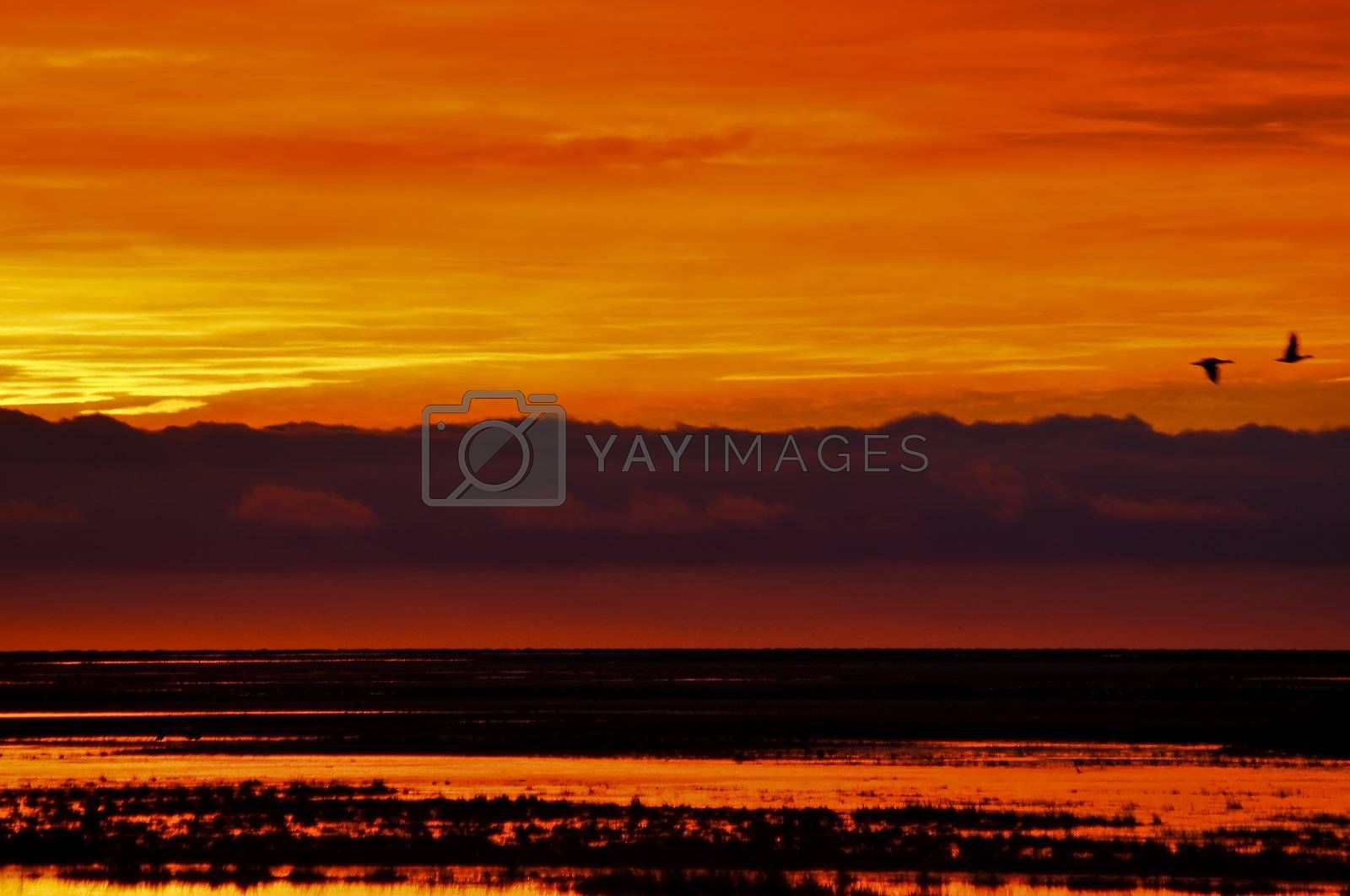 An orange and yellow sunrise in Tierra del Fuego, Argentina.