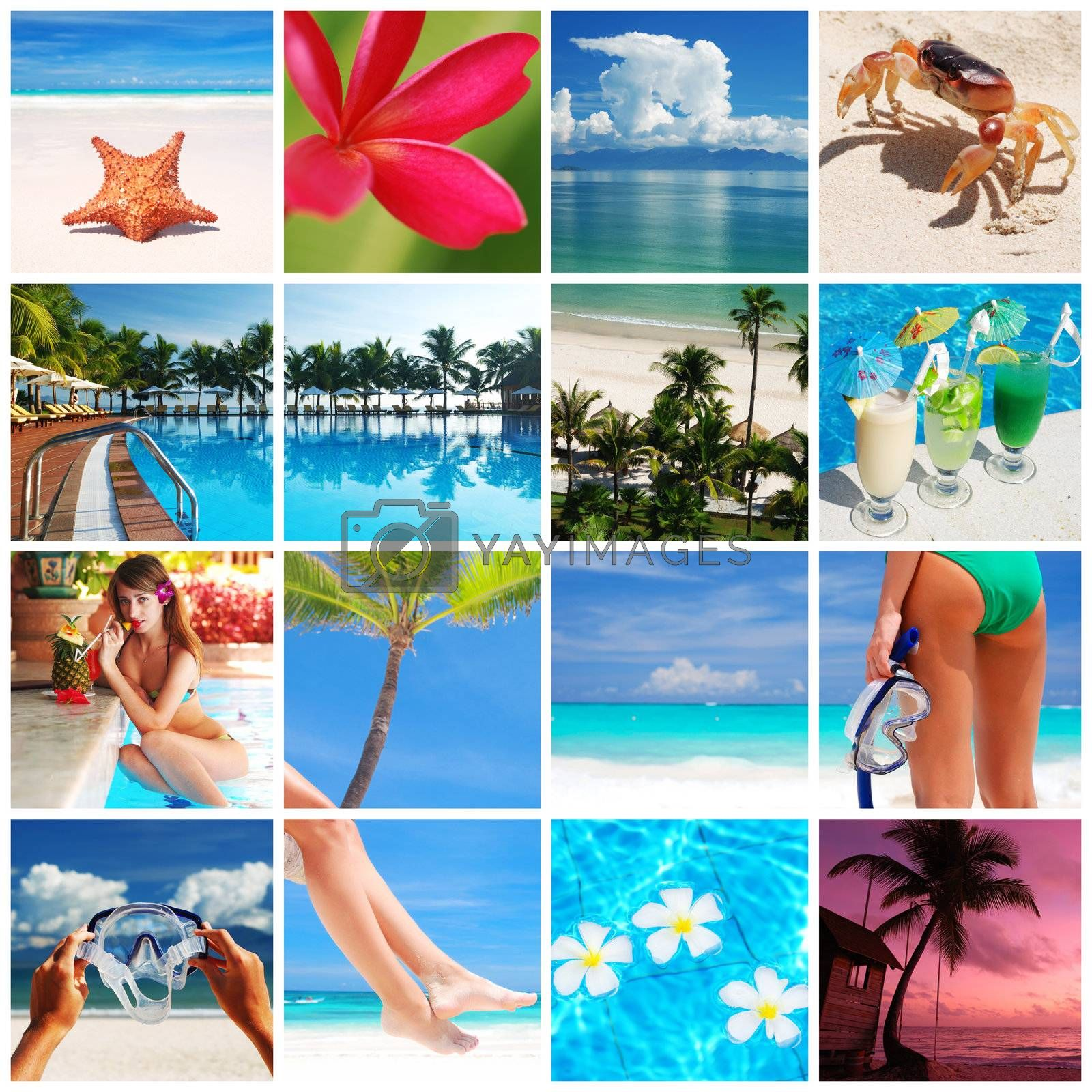 Collage made with beautiful tropical resort shots