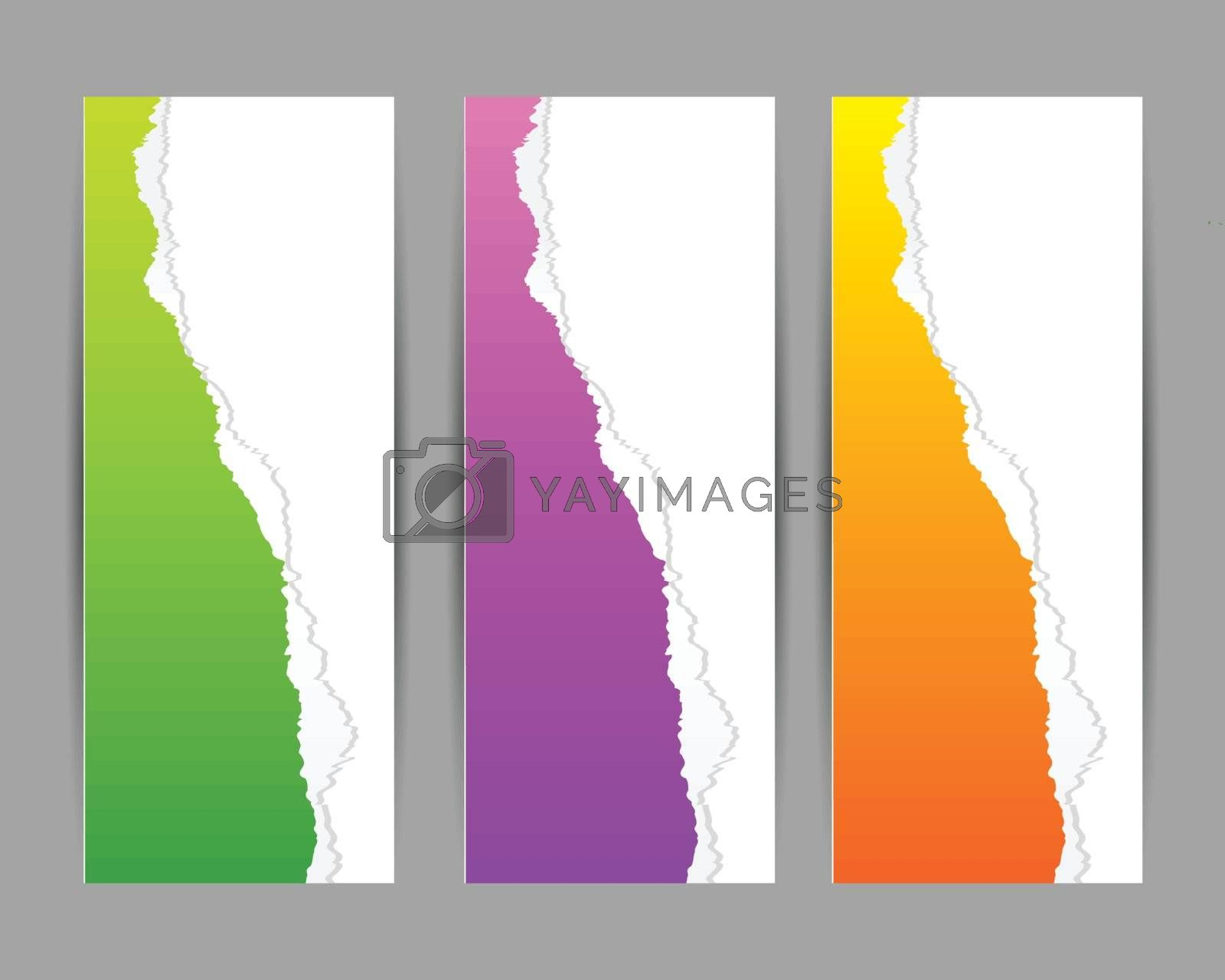 colorful torn paper banner with place for your text