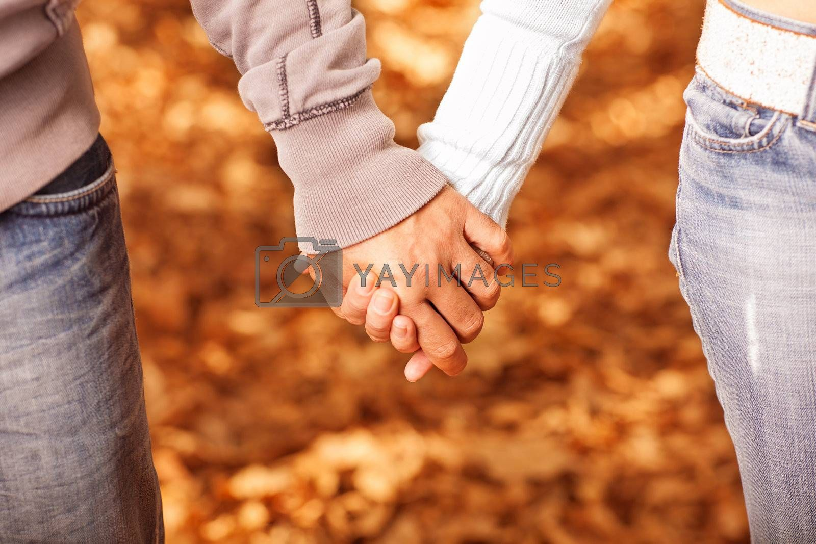 Photo of two loving people holding each other by hands on golden autumnal background, romantic relationship, best friends, happy couple, orange fall foliage under feet, happiness and love concept