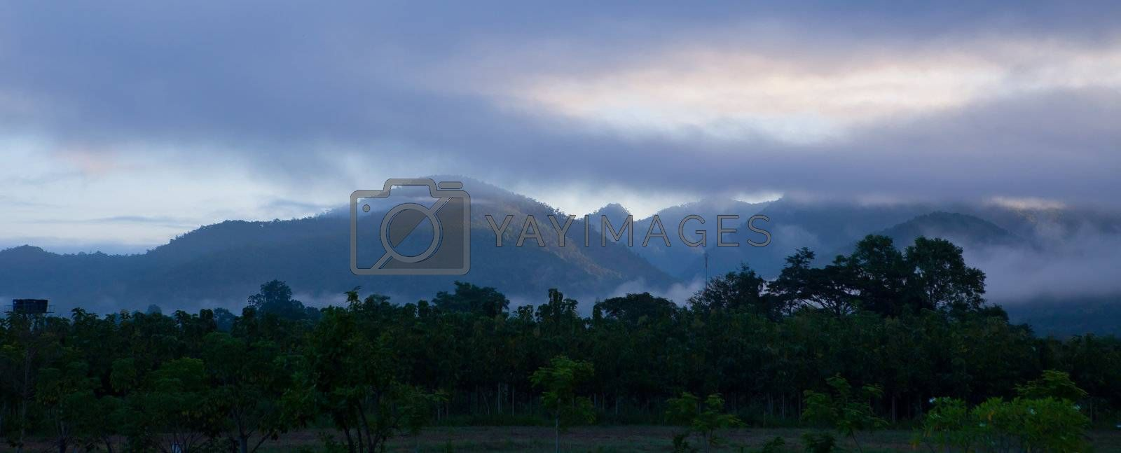 morning mist cover mountain in Pai Maehongson ,Thailand