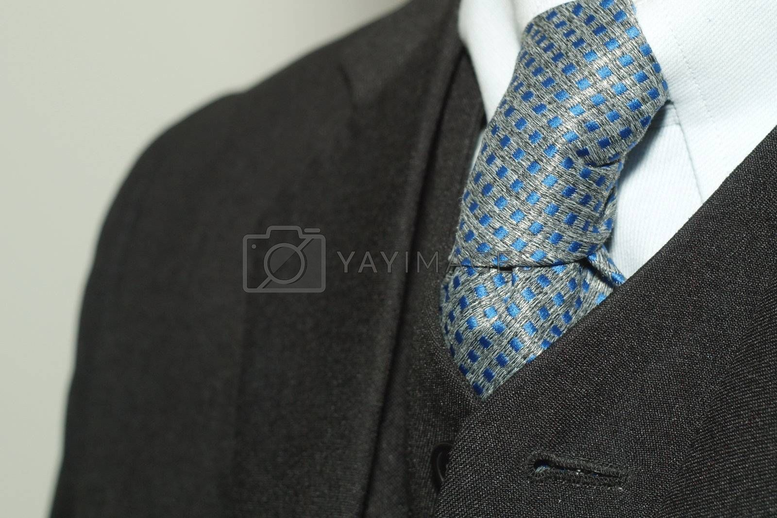 Tie of a business man