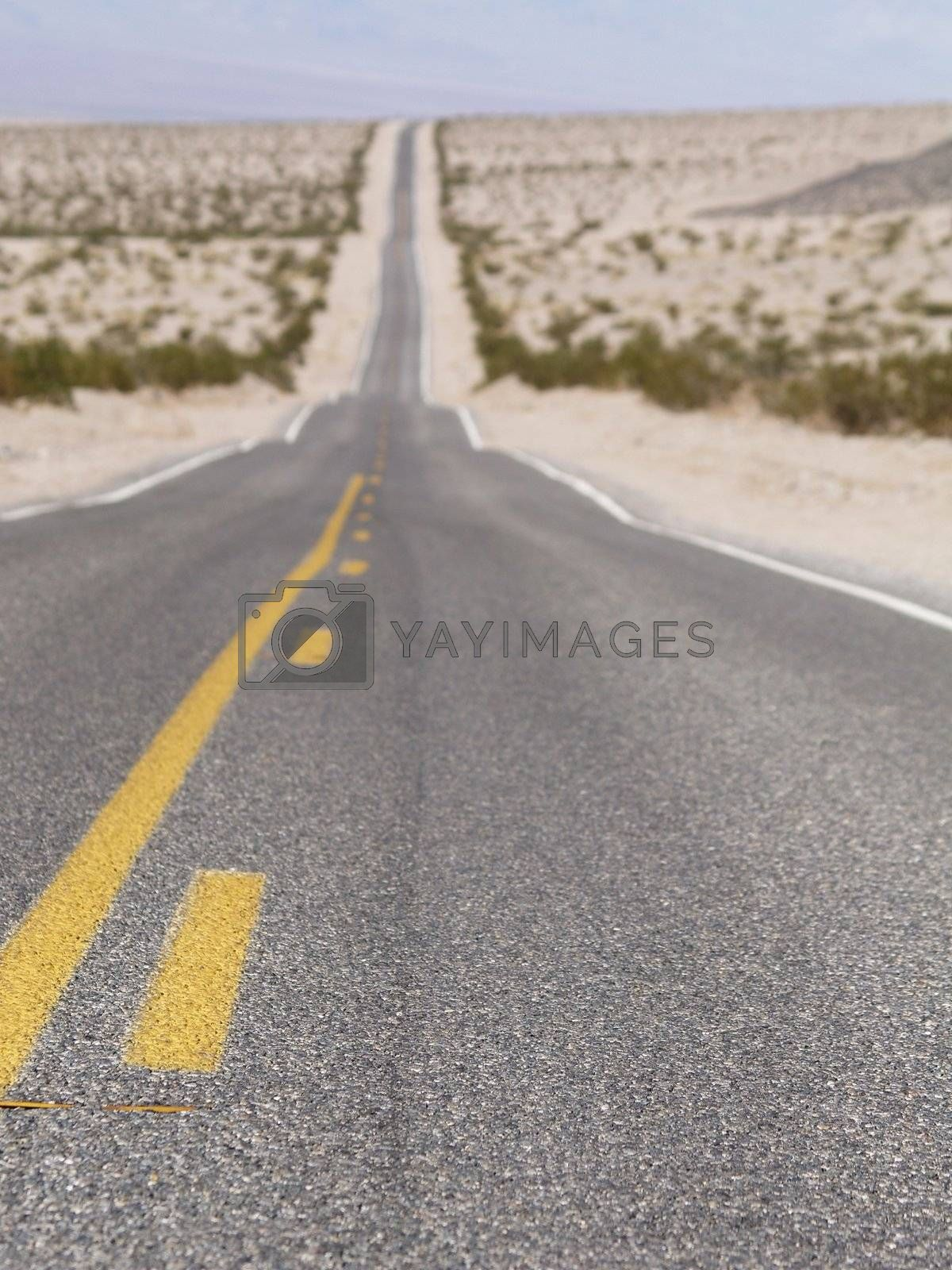 Endless road at the desert