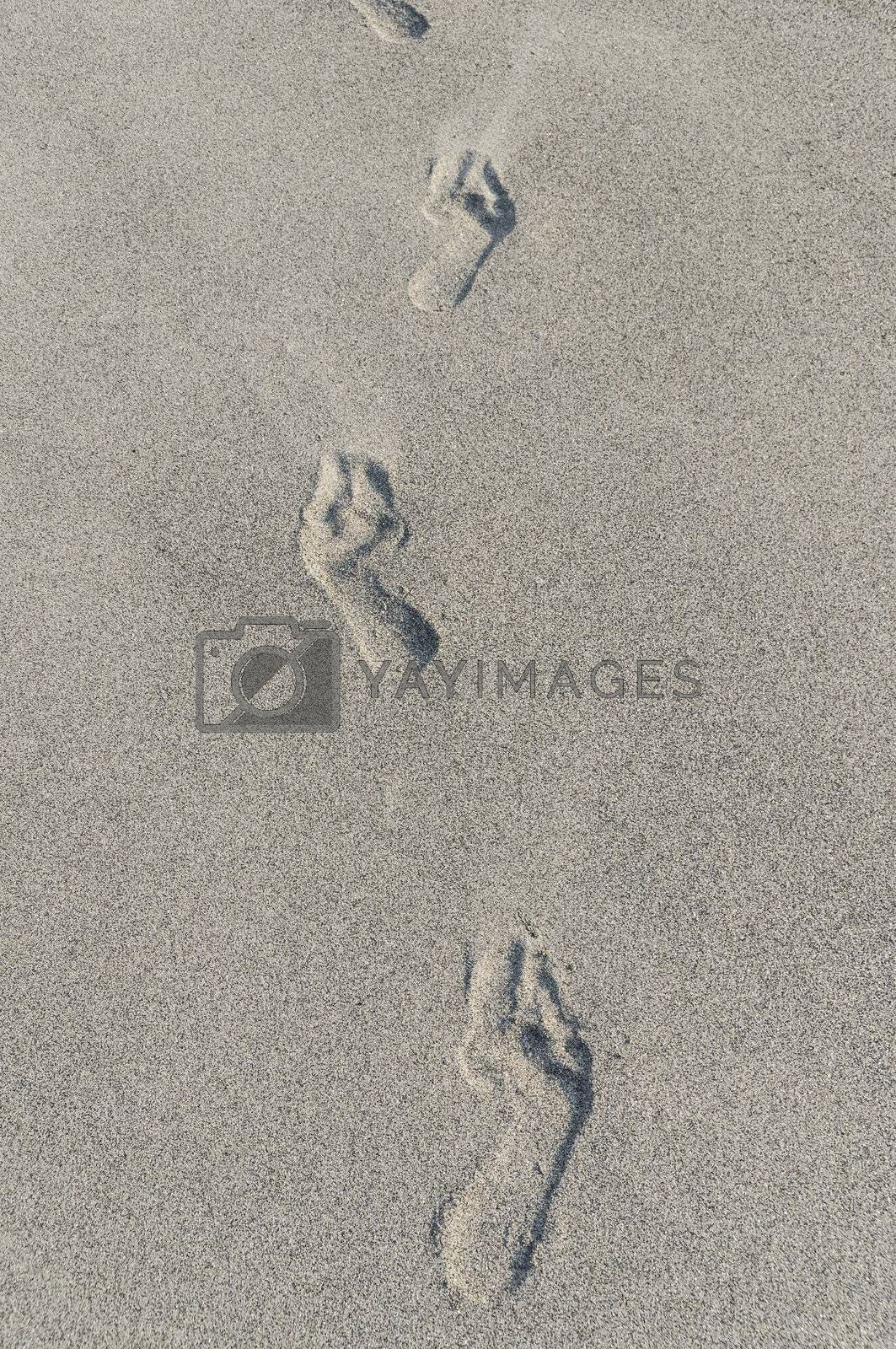 human footprints in the sand, vertical image