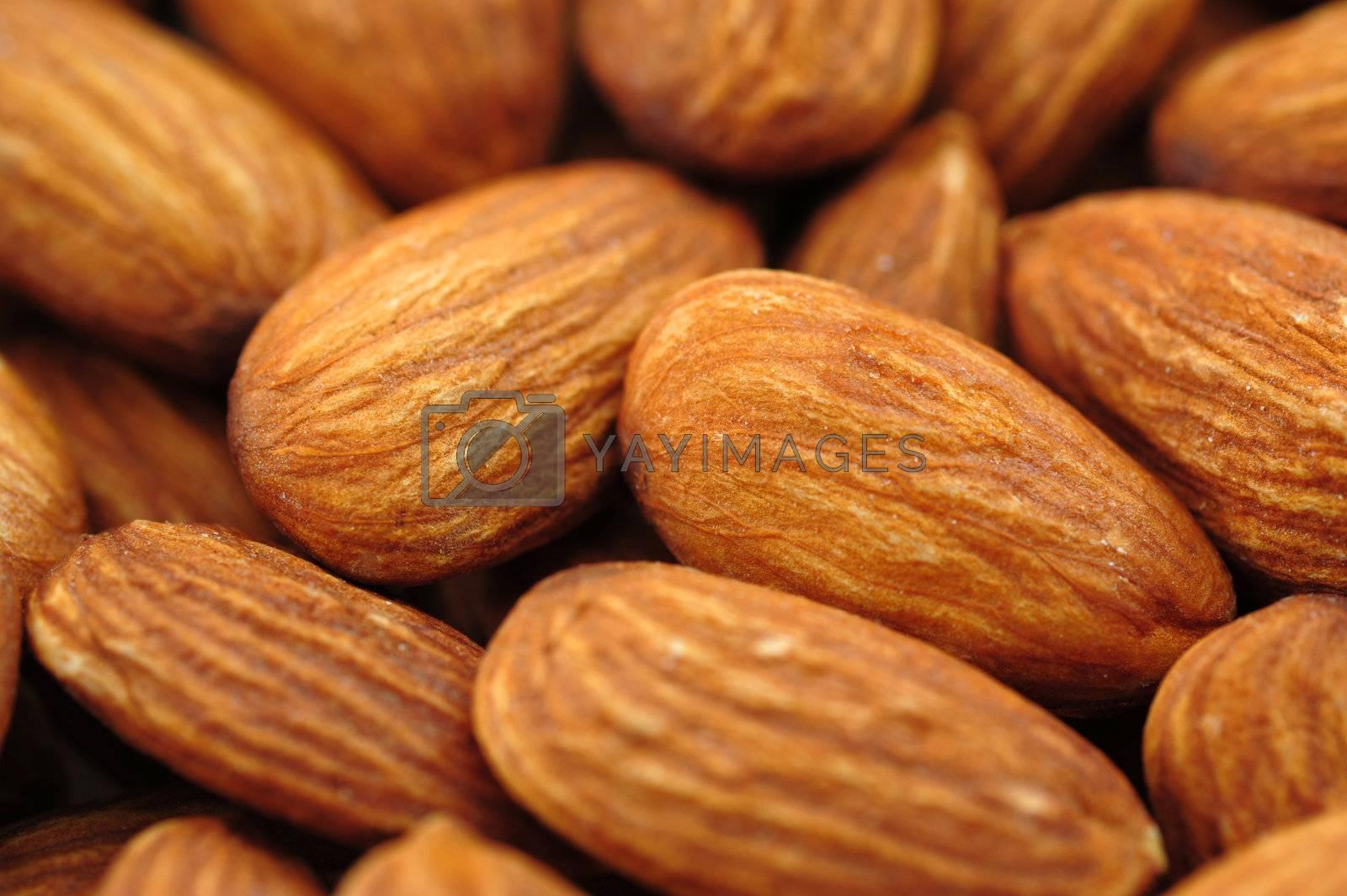 Almonds by antpkr