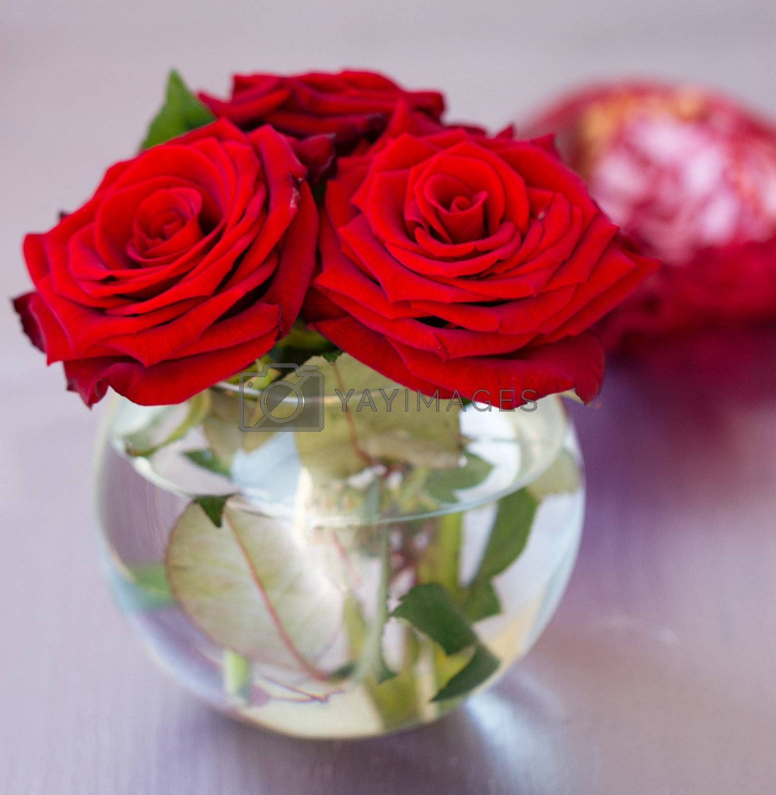 vase with red roses on the table by victosha