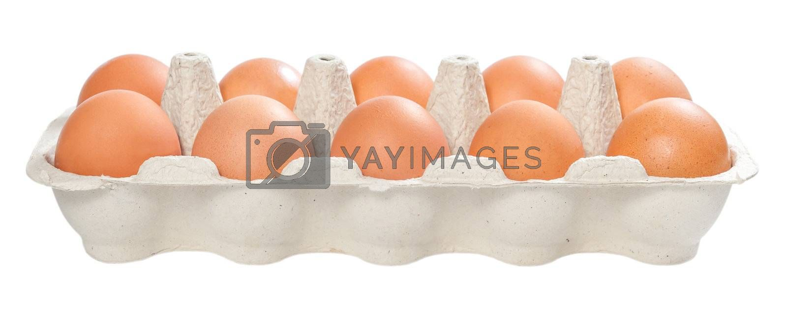 Ten brown eggs in carton package to isolate the background