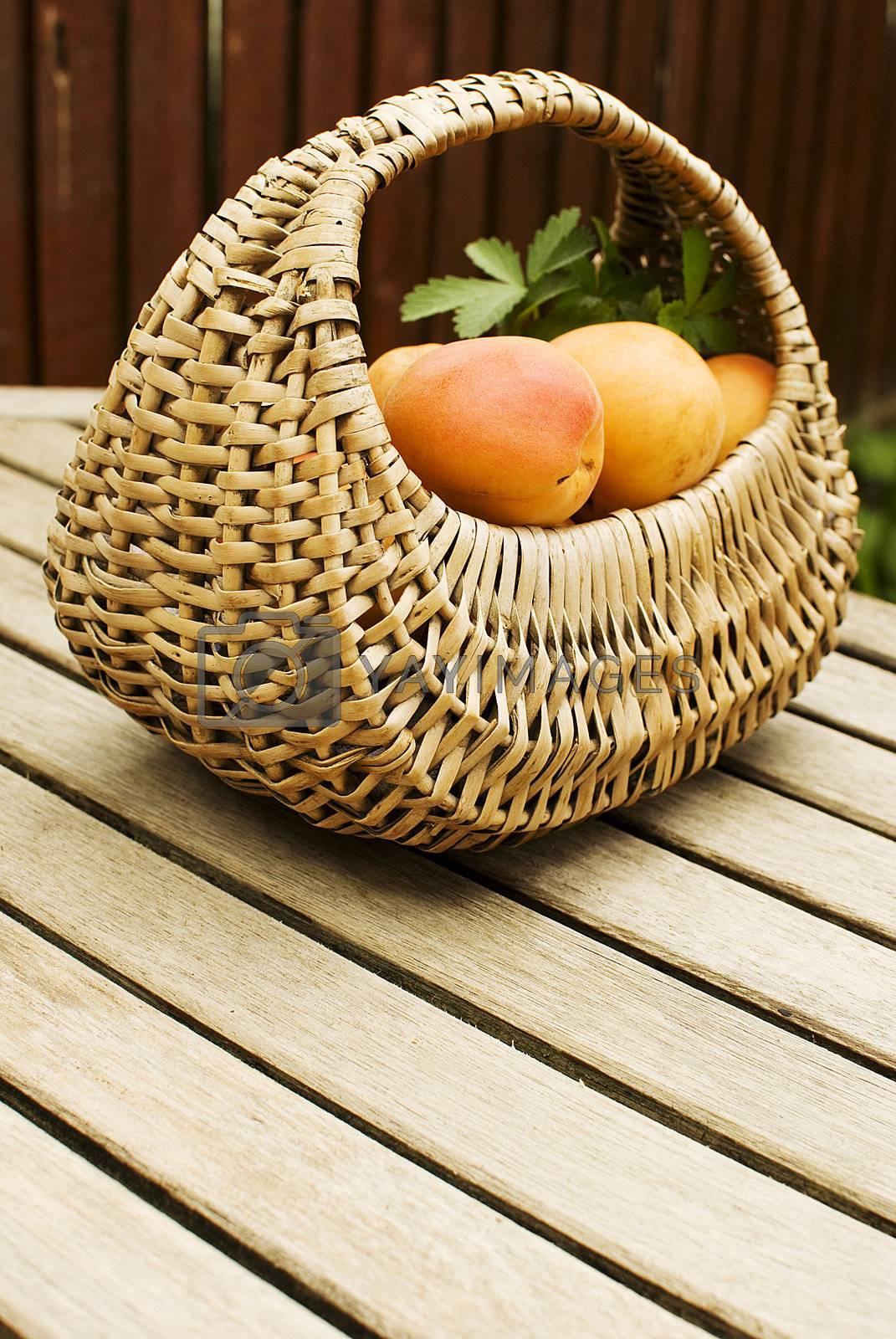 apricots by Dessie_bg