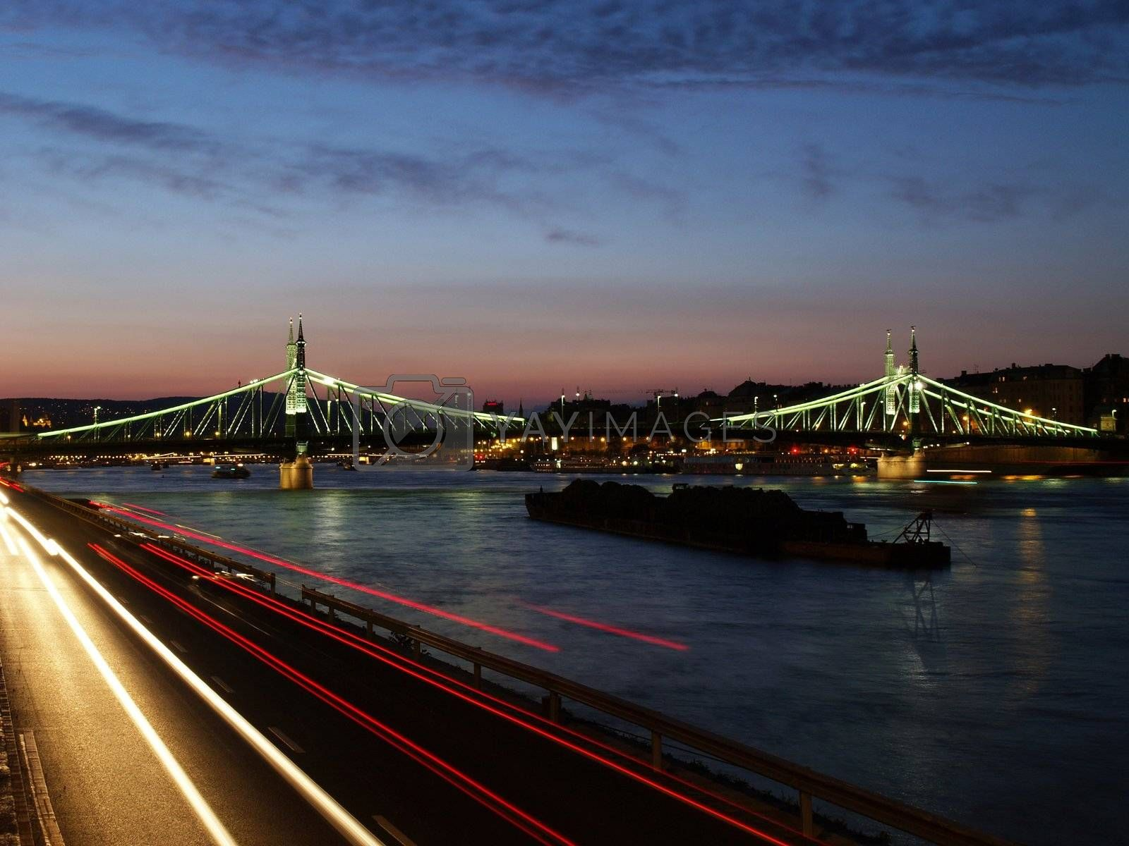 Freedom bridge of budapest by anderm