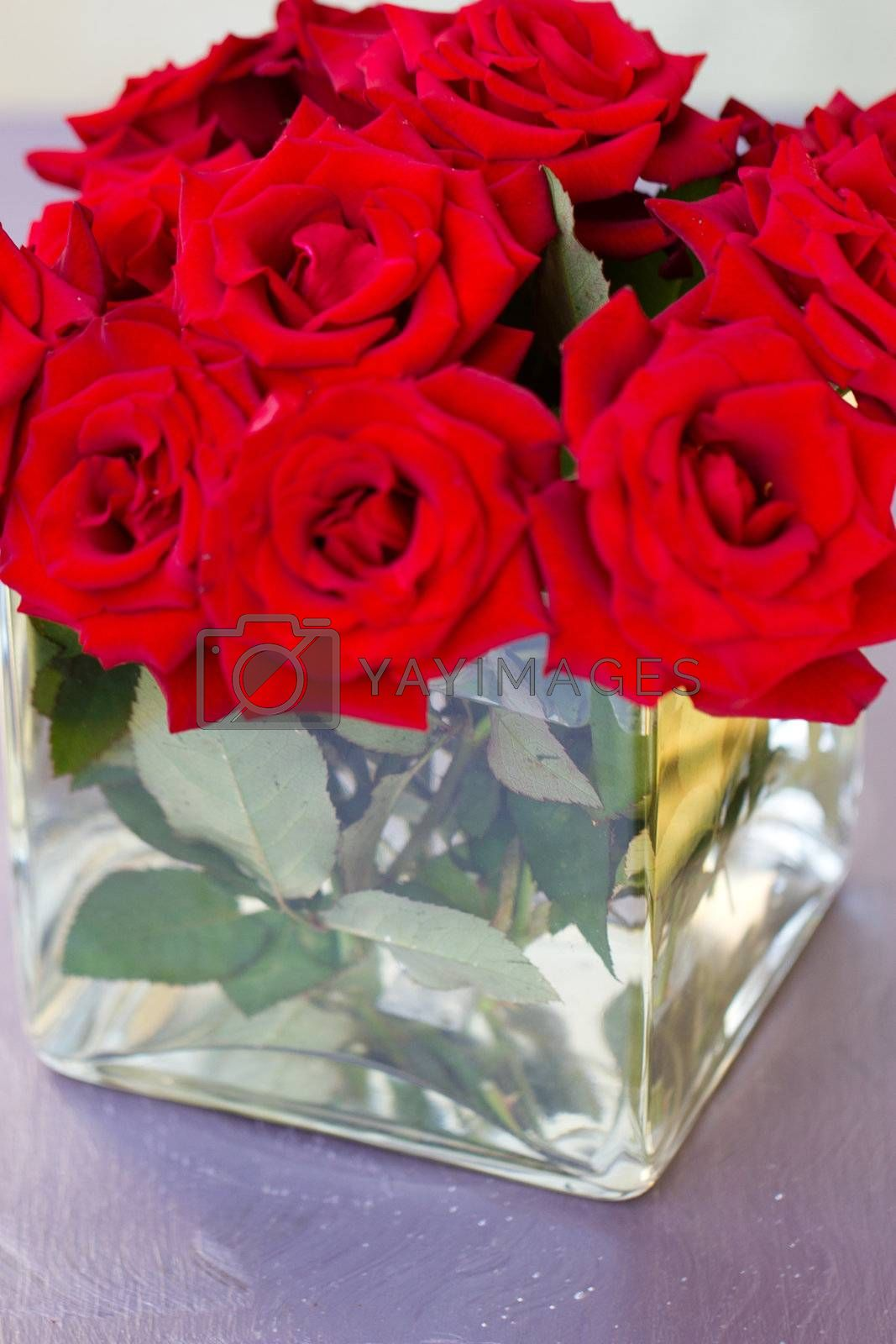 Bunch of red rose flowers in vase by victosha