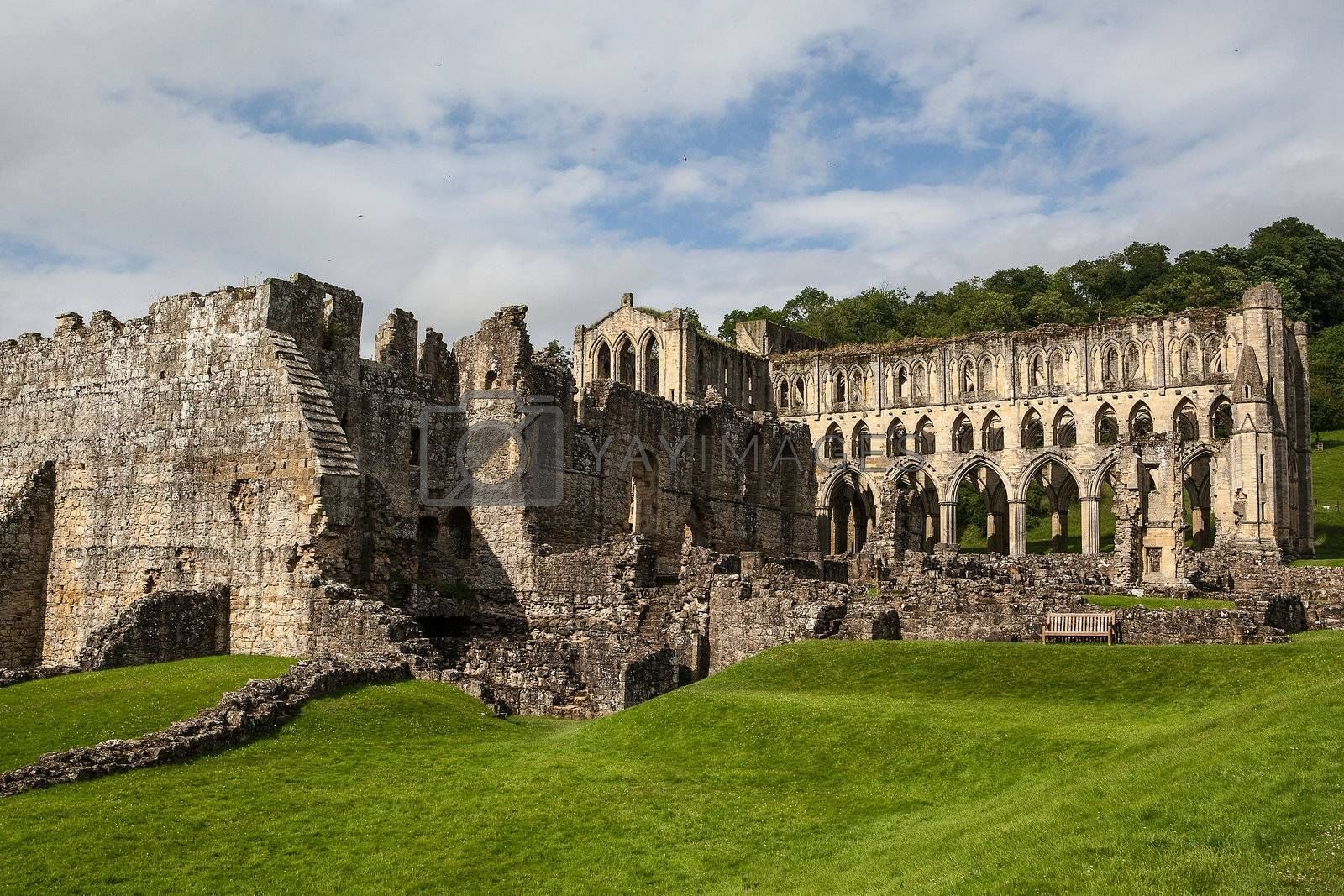Rievaulx Abbey by CaptureLight