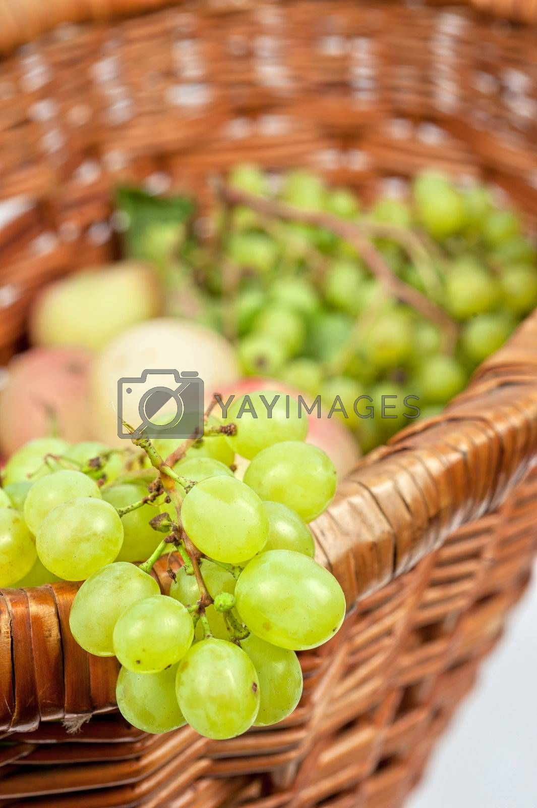 apples and grapes by rusak