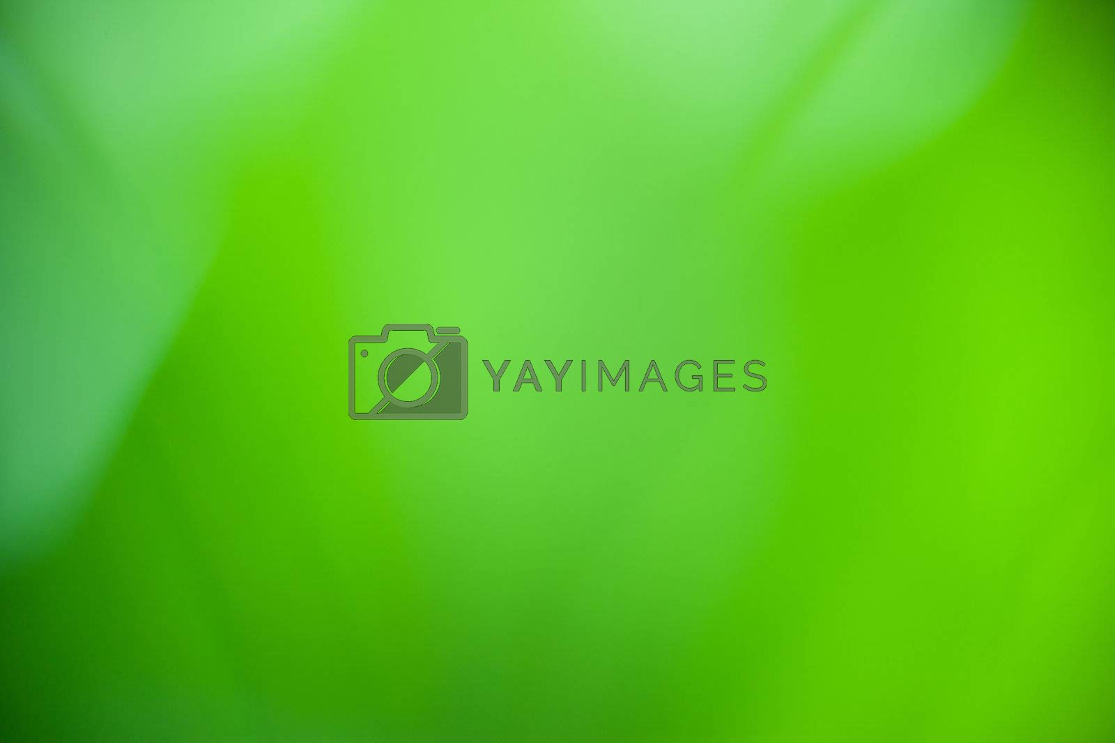 Green nature abstract by antpkr
