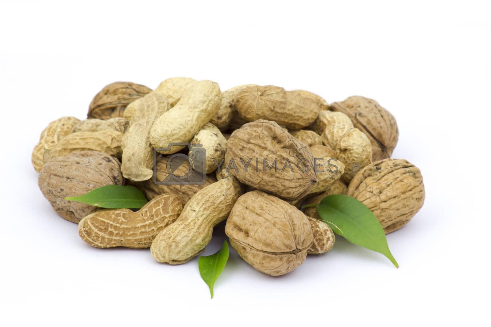 walnuts and peanuts by miradrozdowski