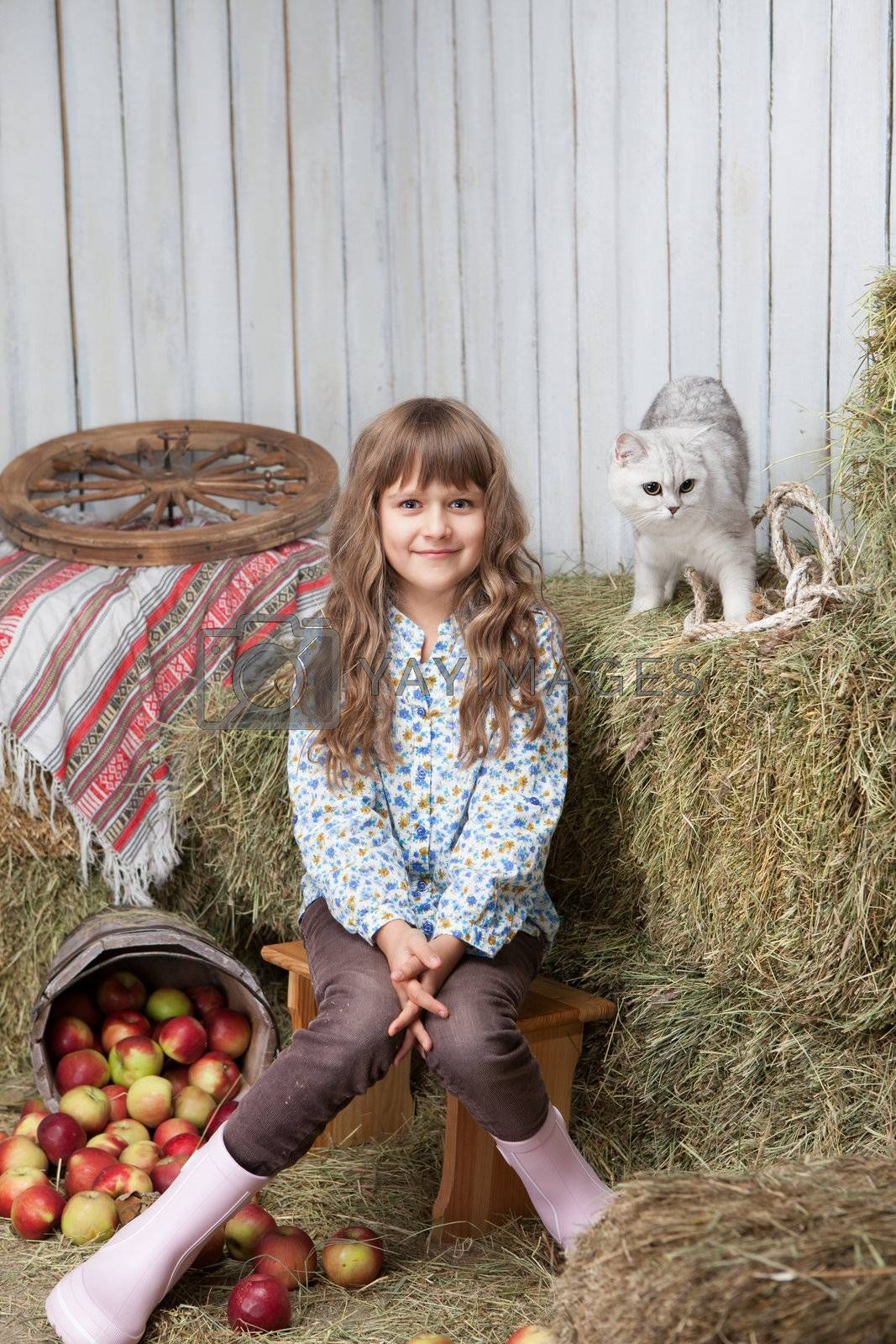 Portrait of sincere little blond girl villager sitting near pail with apples and white cat on hay stack in wooden hayloft