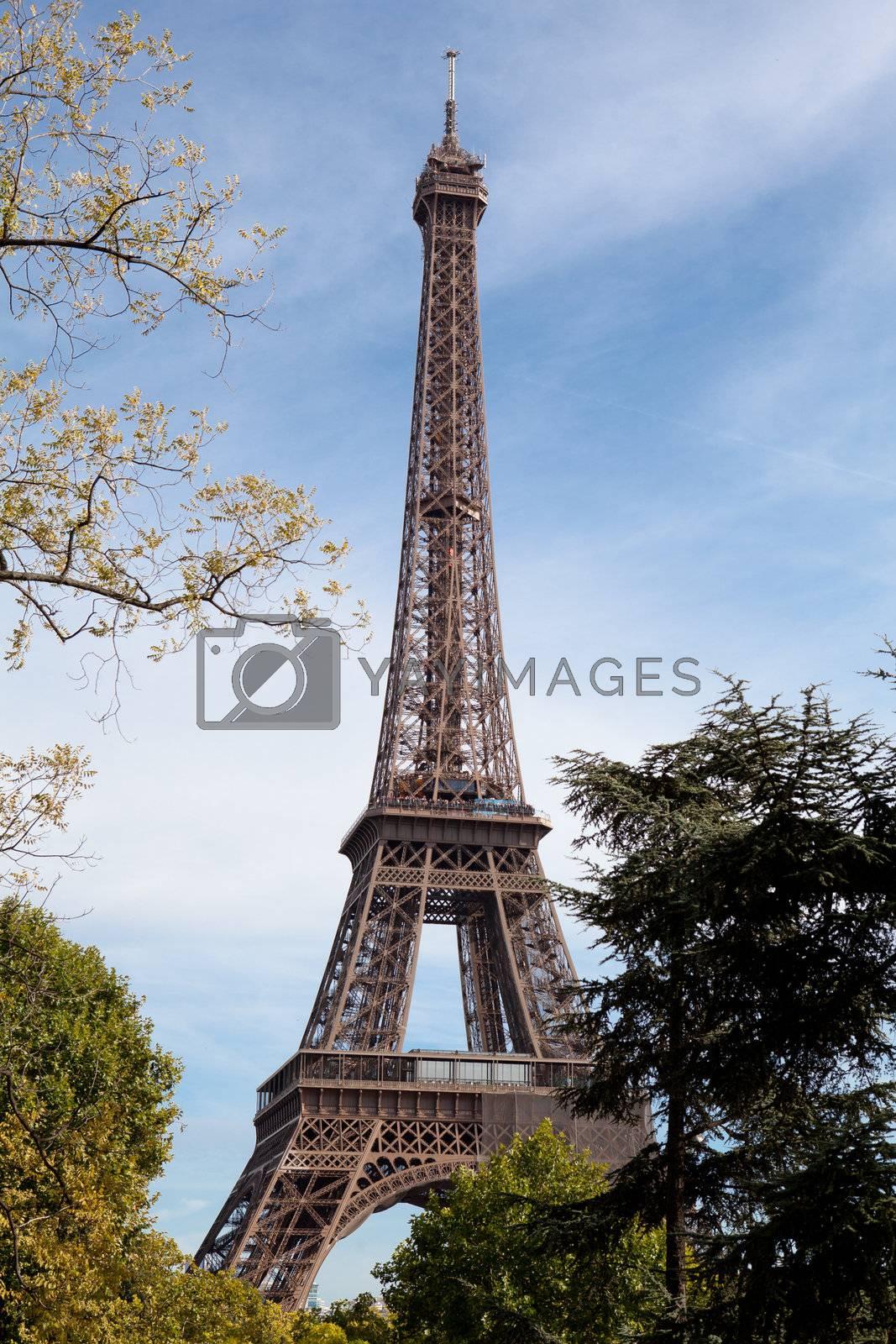 National landmark Eiffel tower through trees in Paris France by SergeyAK