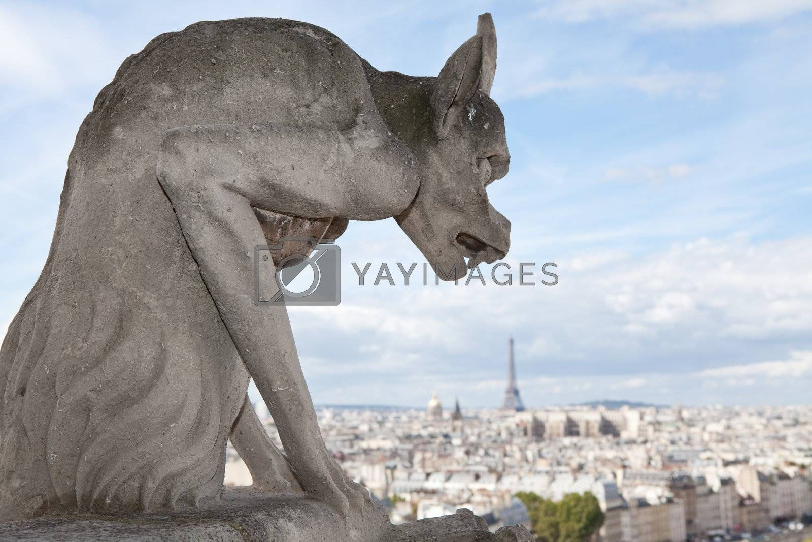 Gothic gargoyle Statue on cloudy sky background and top view from cathedral Notre Dame on streets, center, downtown, tower Eiffel in city Paris France in summer