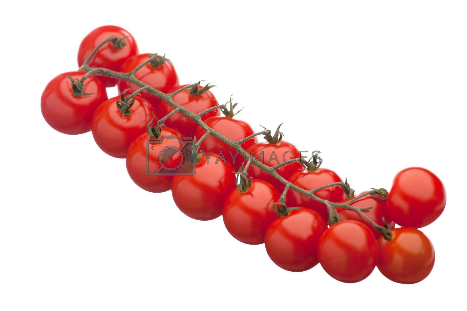Cluster of fresh ripe red cherry tomatoes close-up isolated
