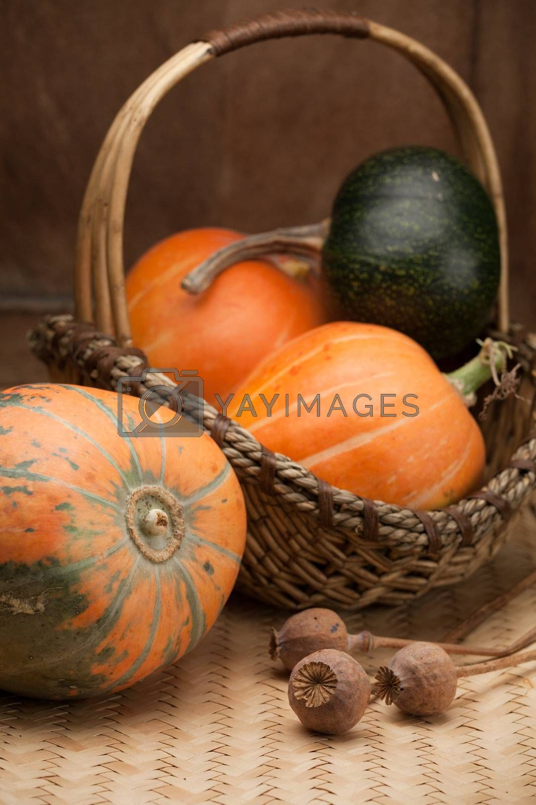 Ripe orange pumpkins in rural woven basket and poppy heads on wooden table