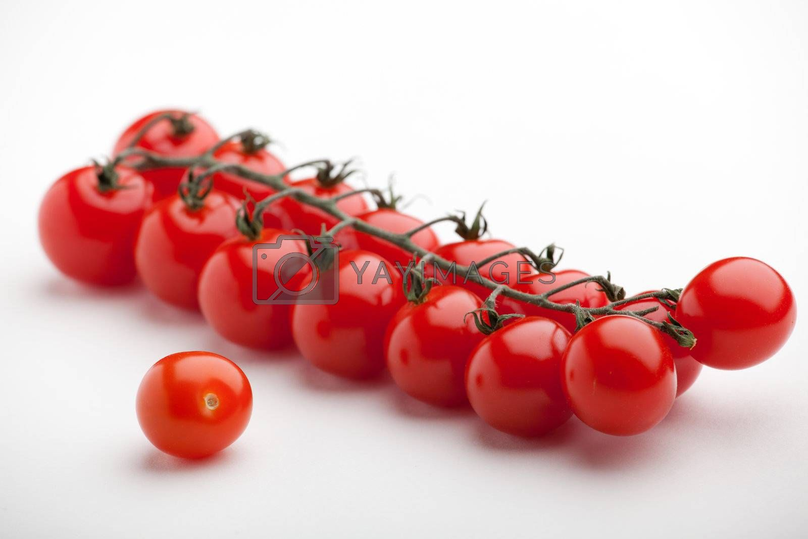 Royalty free image of Bunch of ripe red cherry tomatoes close-up on white background by SergeyAK