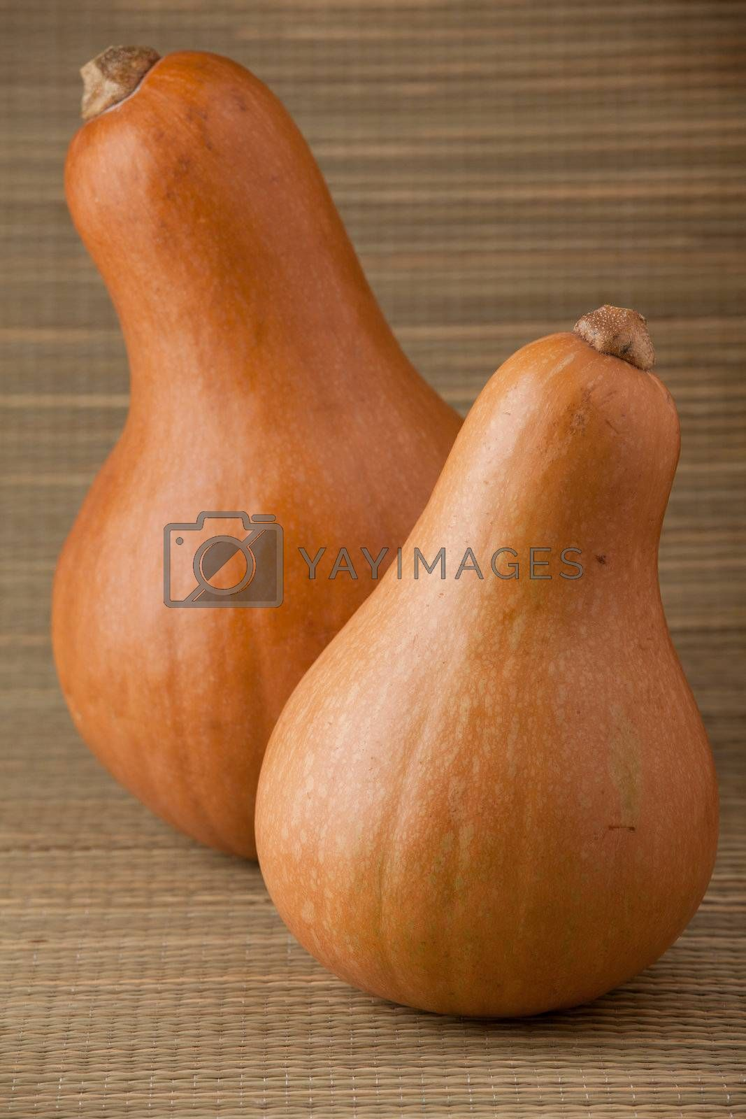 Royalty free image of Two ripe orange pumpkins on straw woven surface and stripy backg by SergeyAK