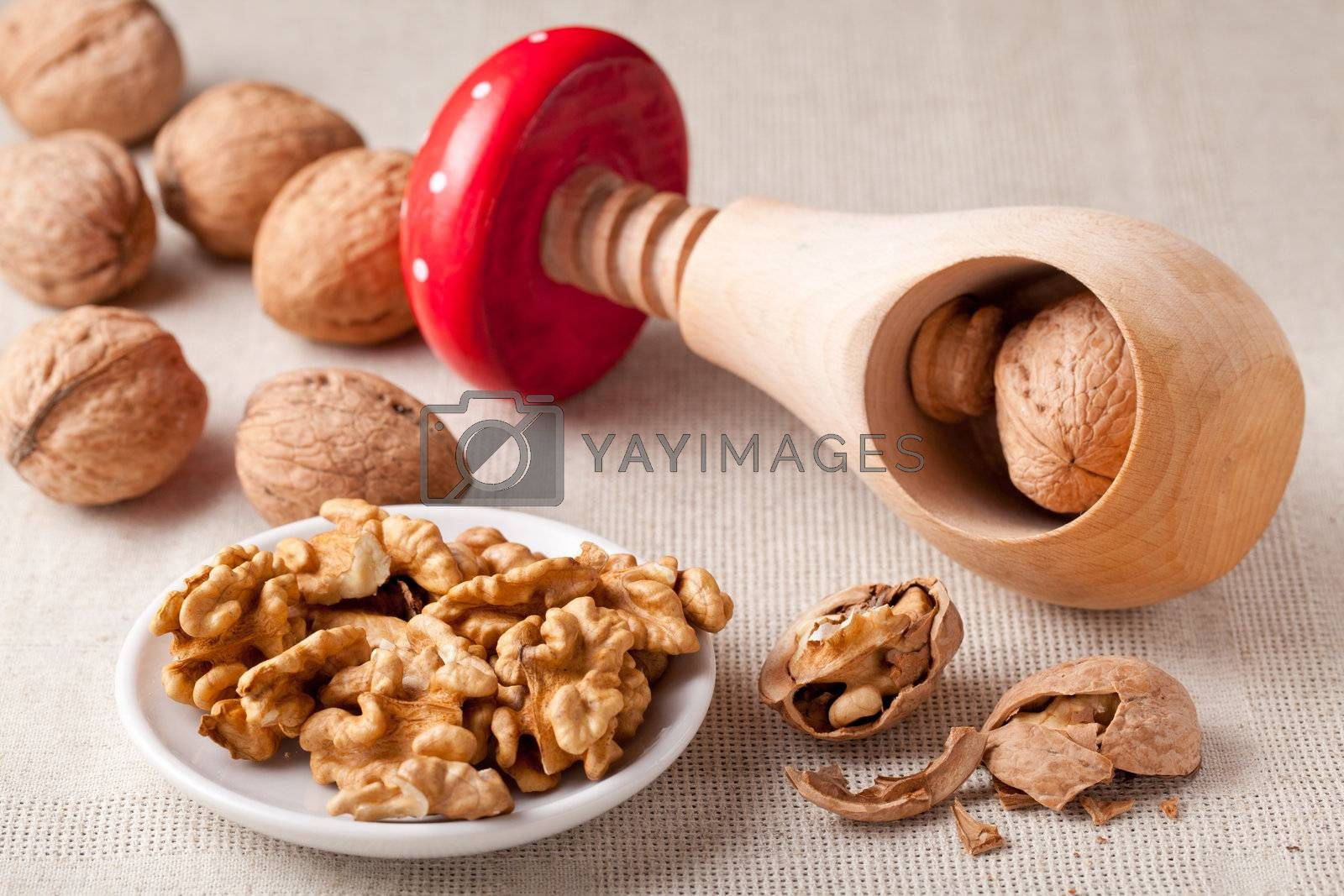 Cores of matured nuts in plate, brown Circassian walnuts,  nutshell and wooden handmade nutcracker like fungus amanita on the linen tablecloth
