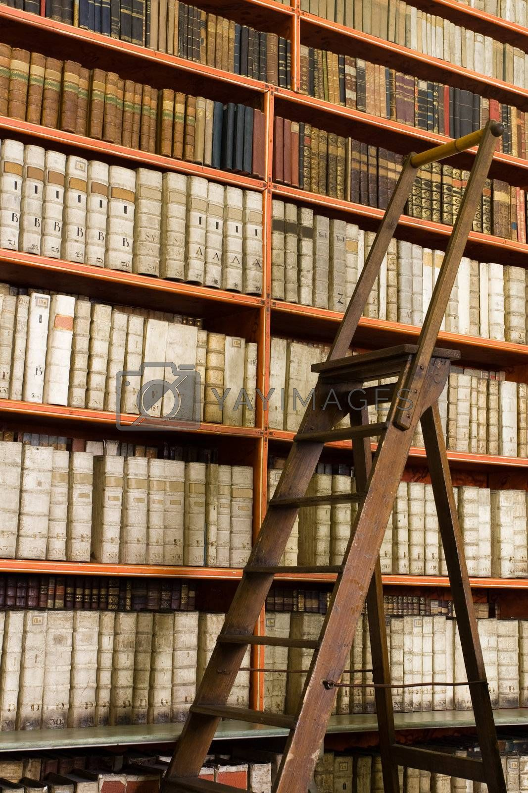 Library full of aged books and ladder by SergeyAK