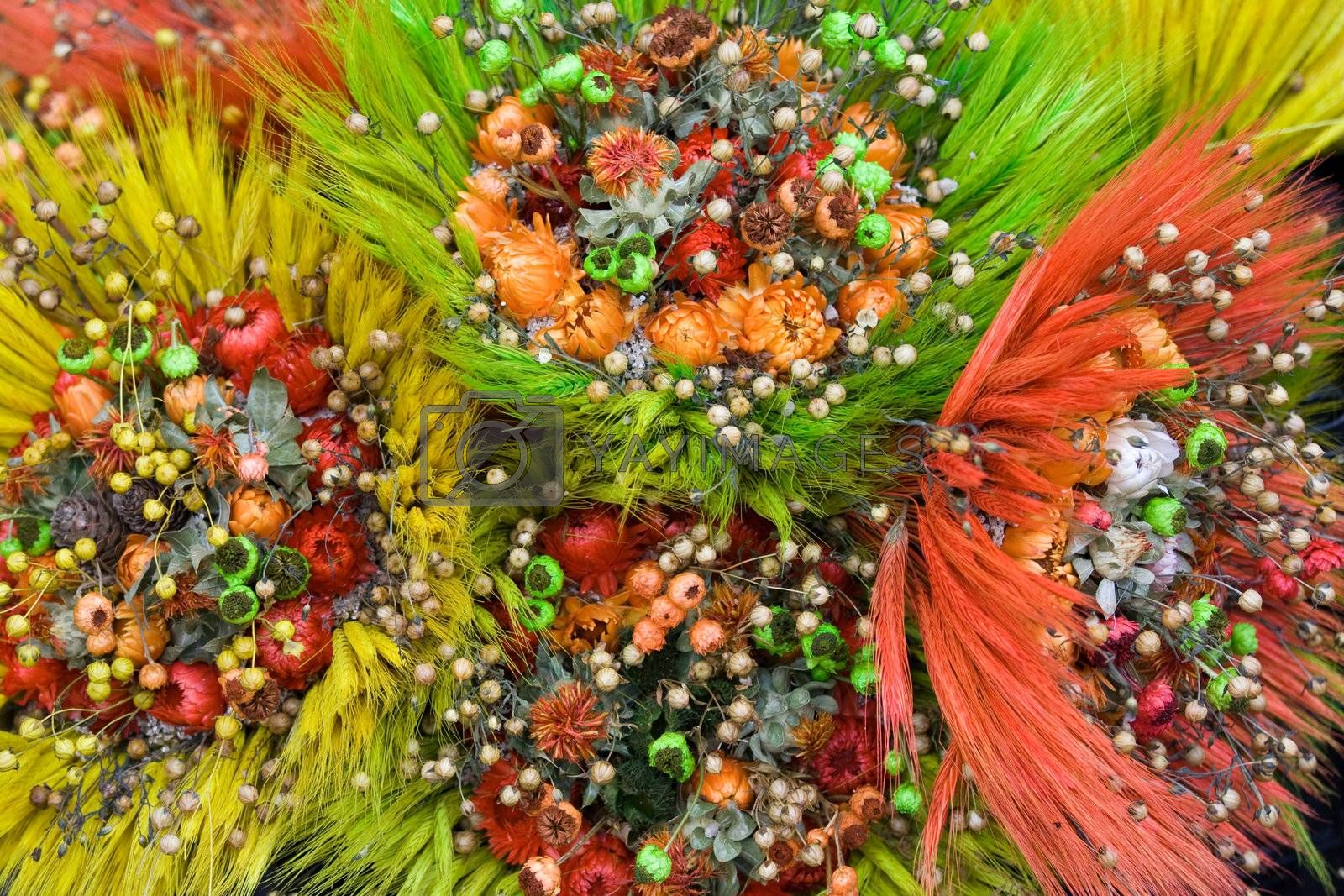 Ornamental Bunch of dried wild flowers and cereals by SergeyAK