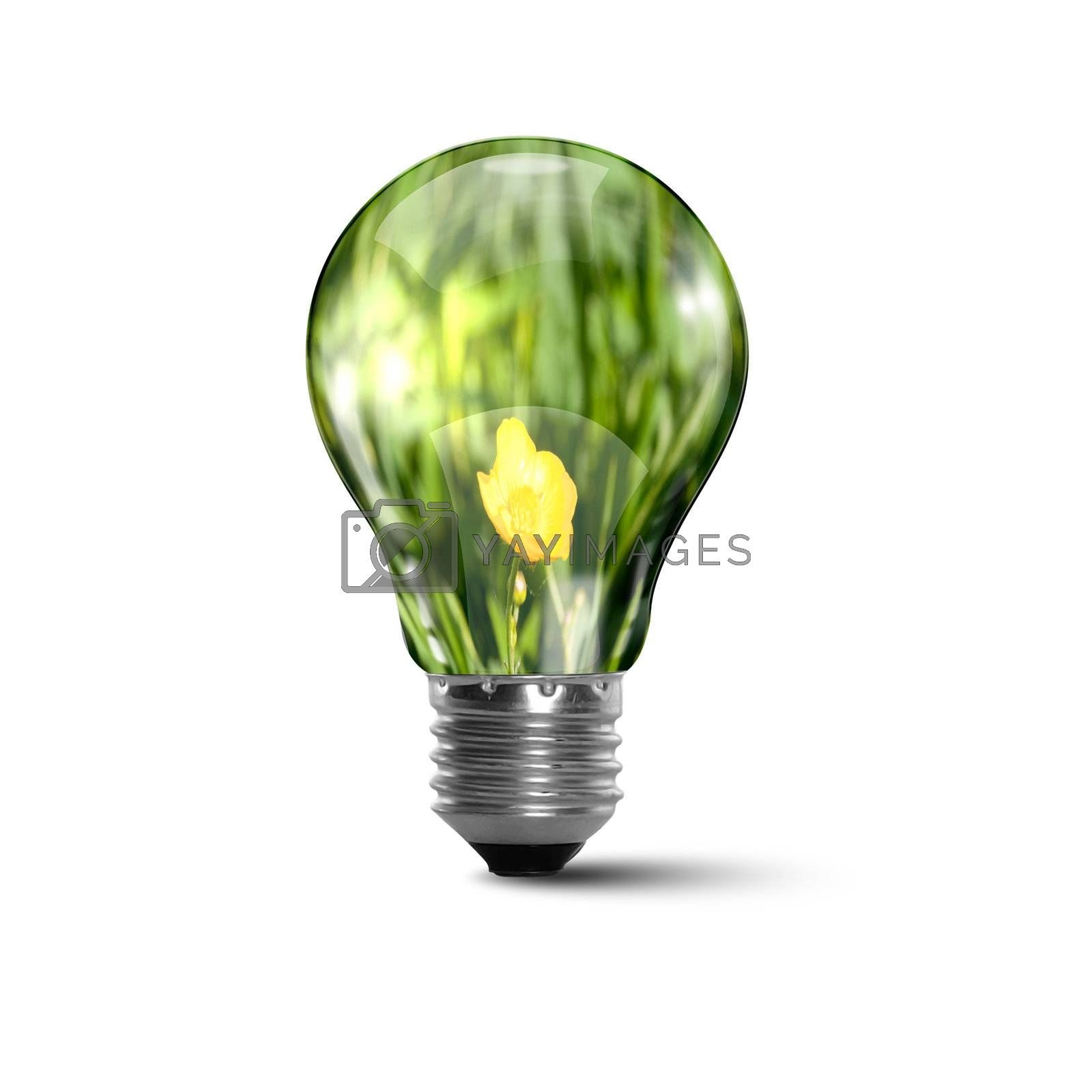 Ecology bulb light by Sergey Nivens