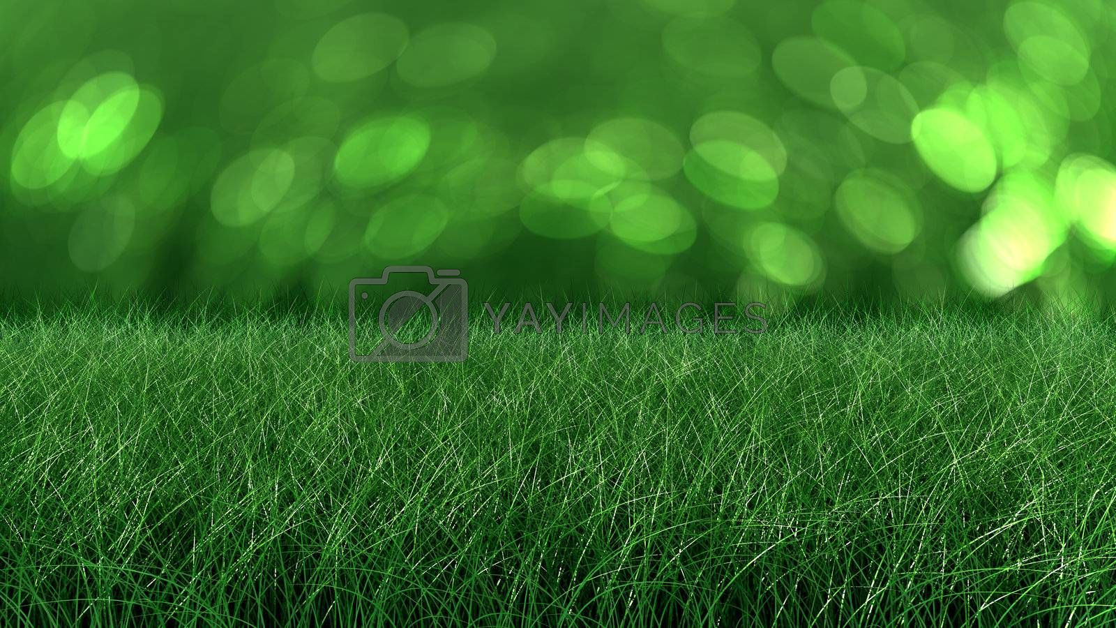 flowers and grass seamless texture for backgrounds