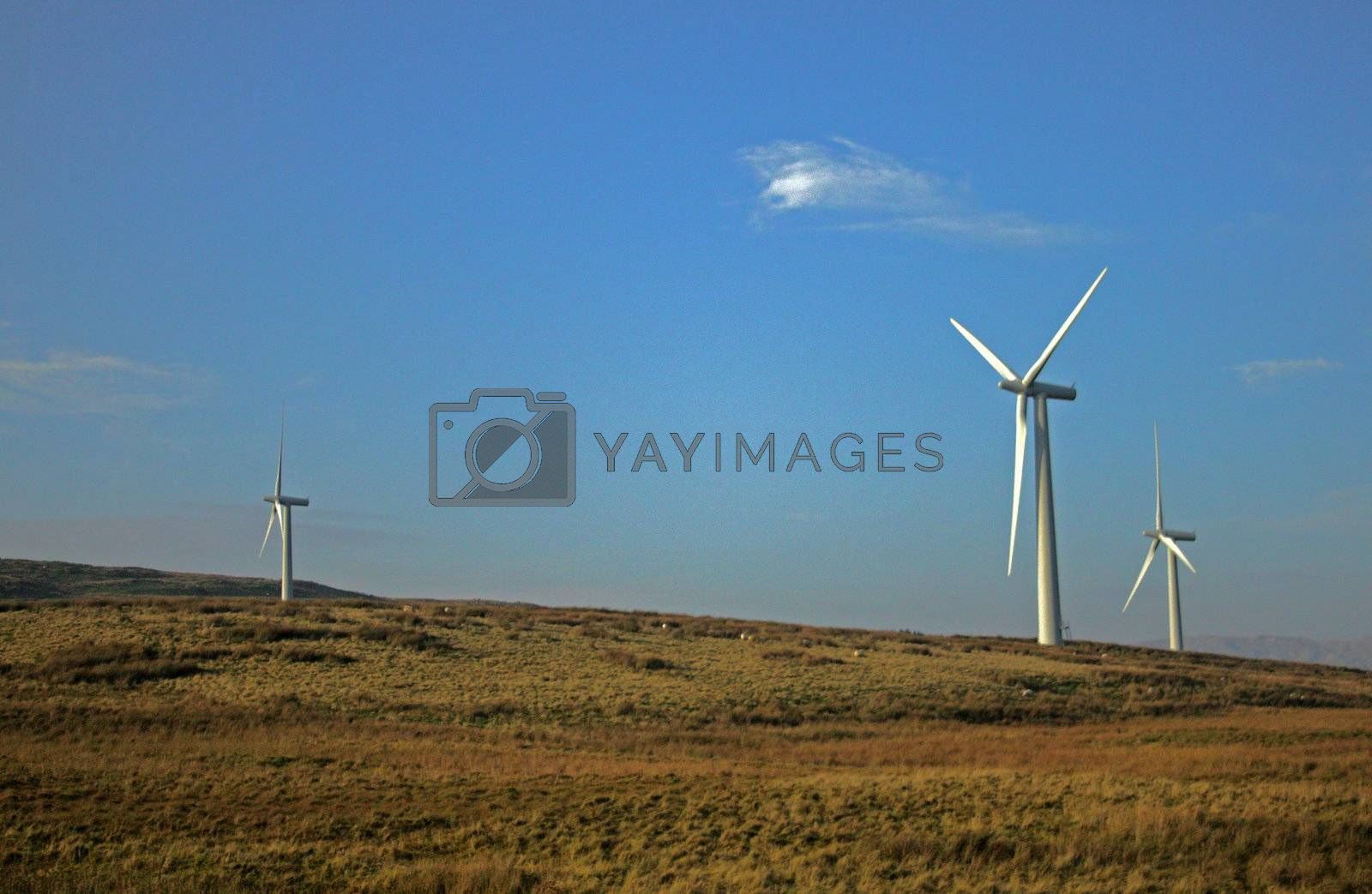 Field with energy producing windmills on top a hill