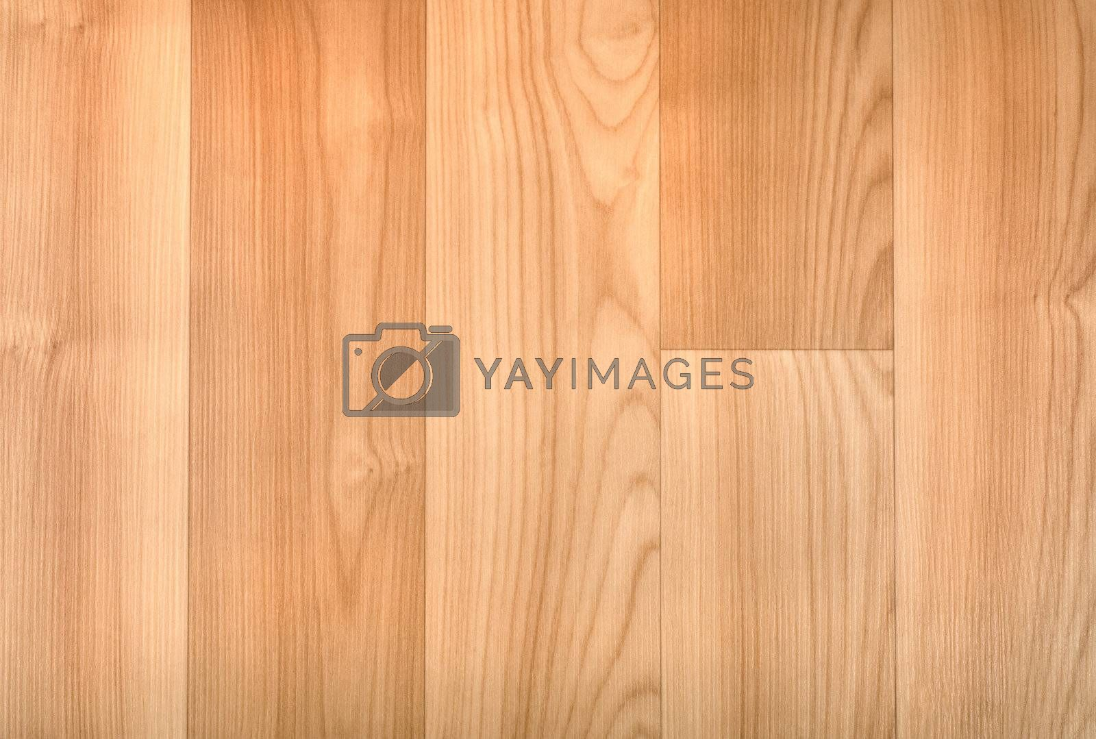 Natural beech texture. Background of wood planks